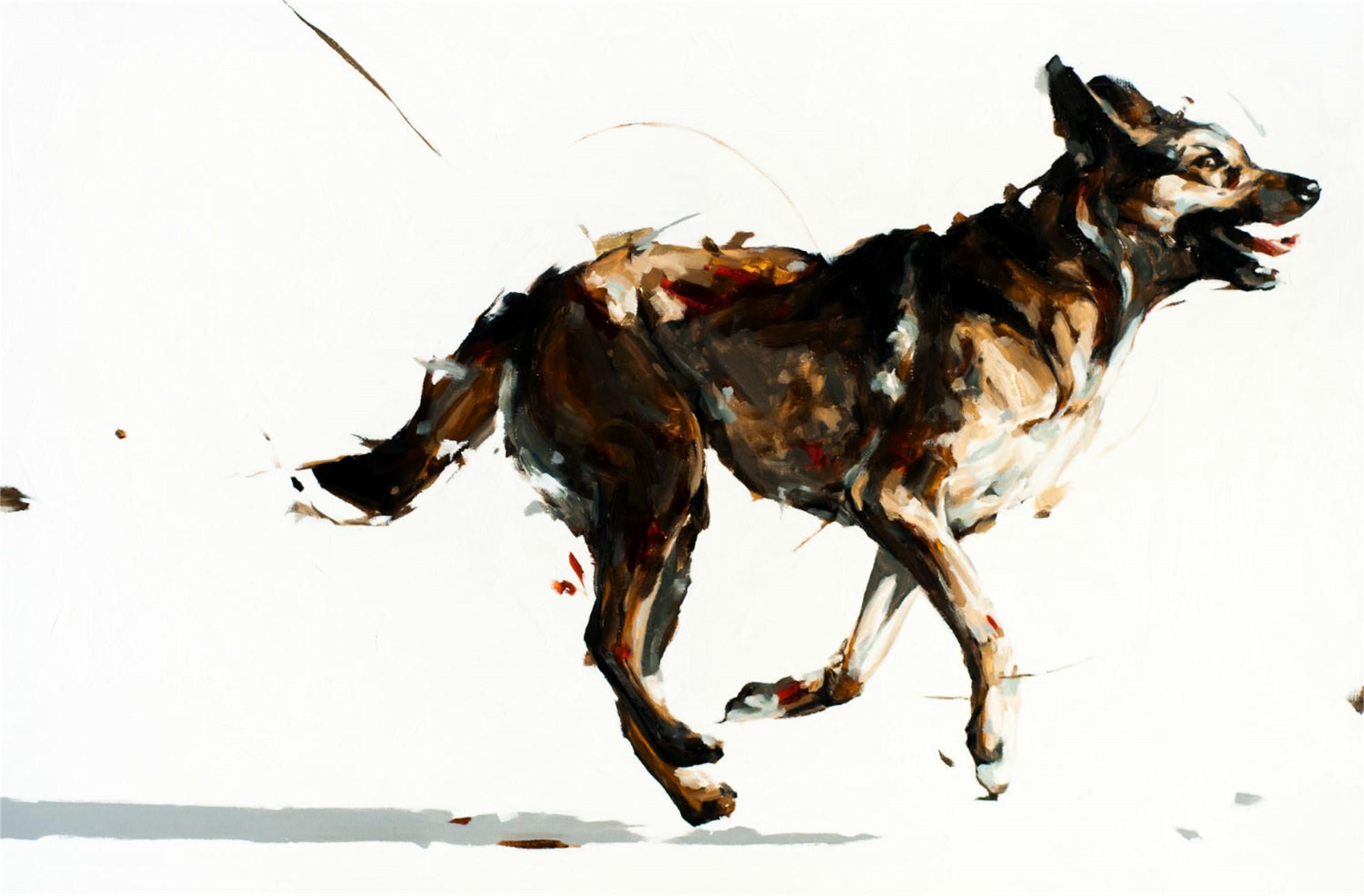 Naya 2 by Thibault Jandot