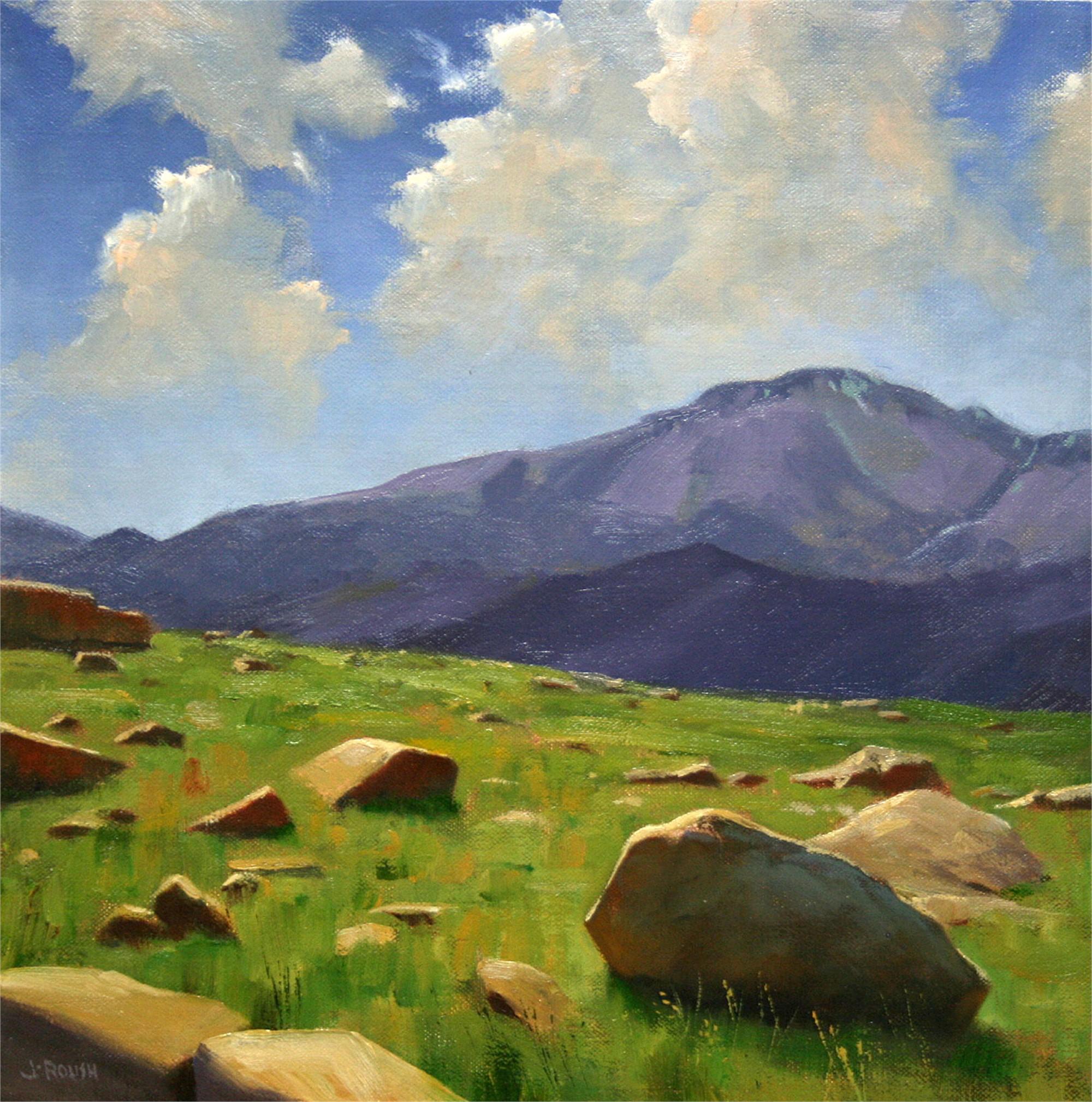 Rock Garden by John Roush
