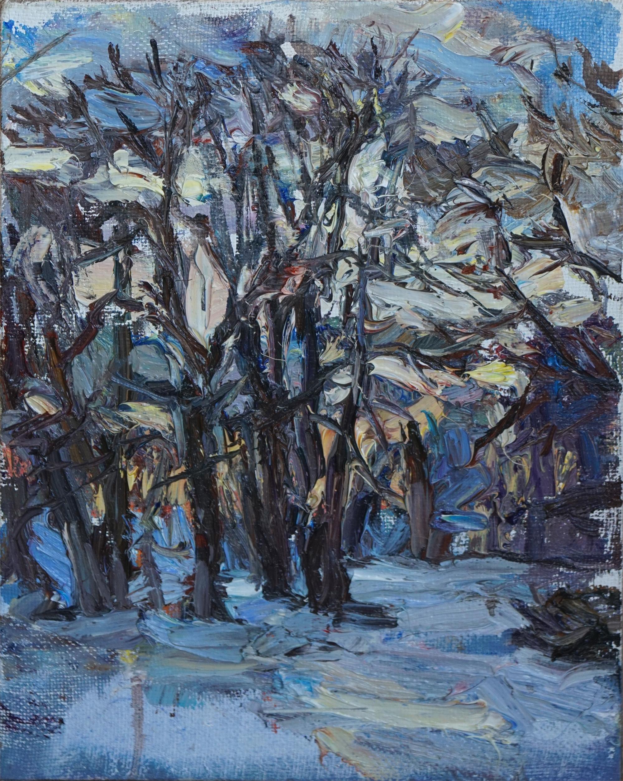 Winter Sunset by Ulrich Gleiter