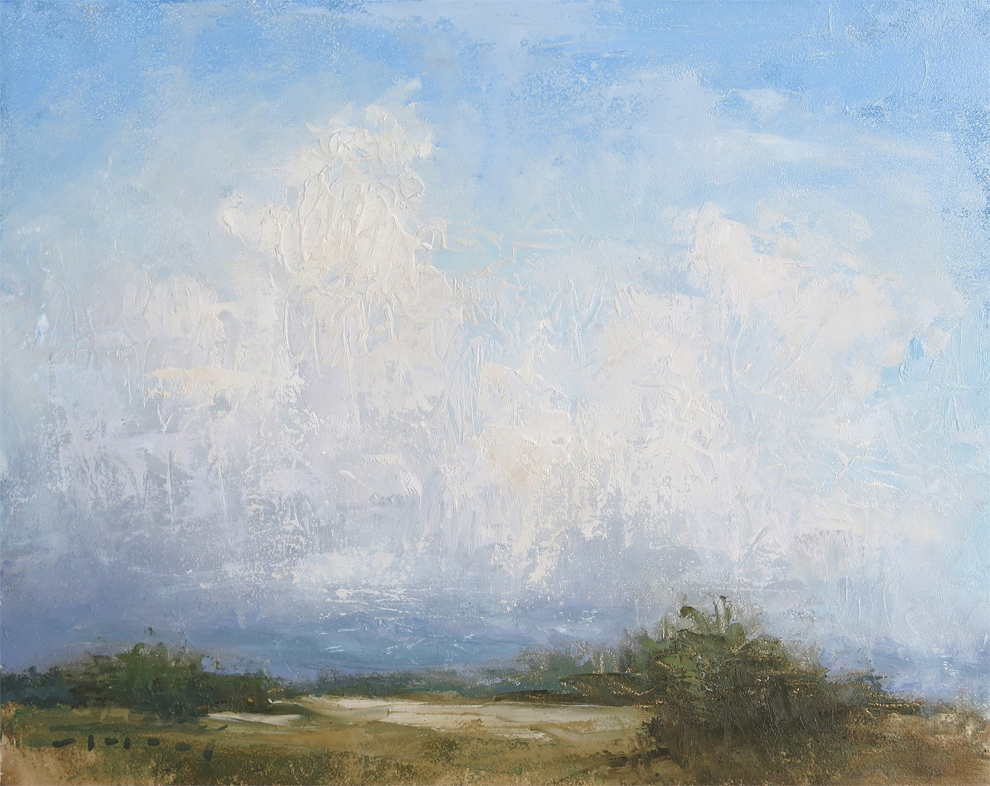 Cloud Study by Jane Hunt