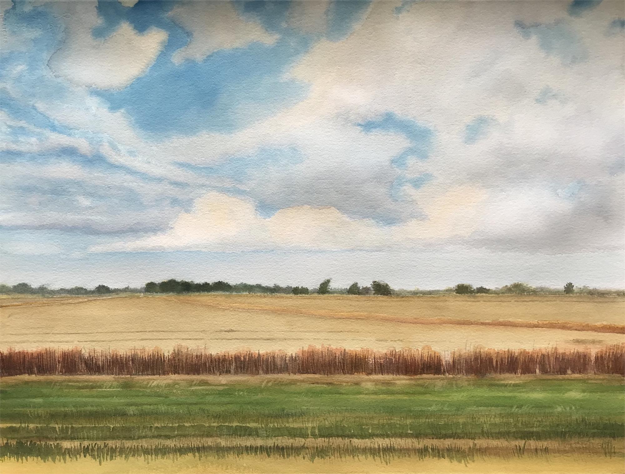 Chambers County #4 by Ken Mazzu