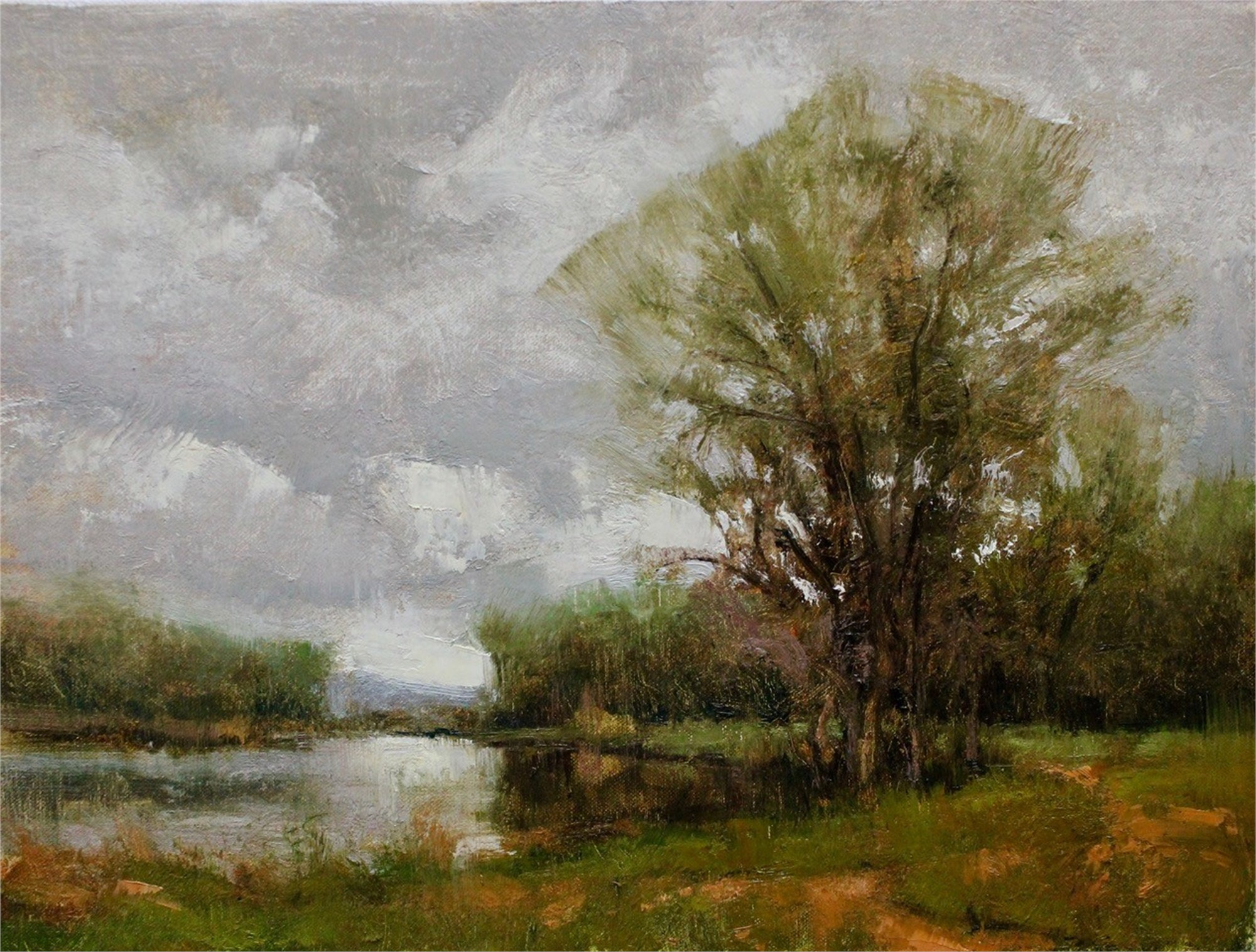 Spring Grey by Michael J Lynch