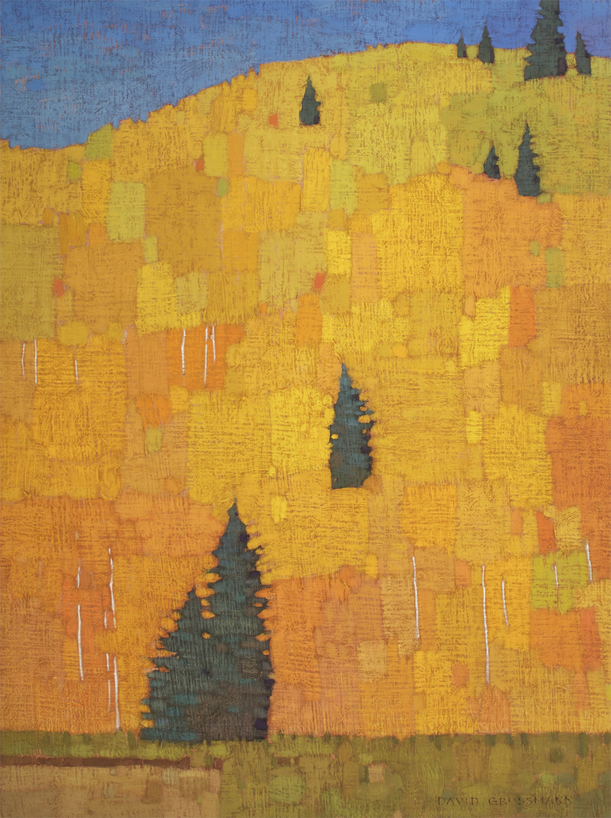 Scattered Pines and Aspen Patchwork by David Grossmann