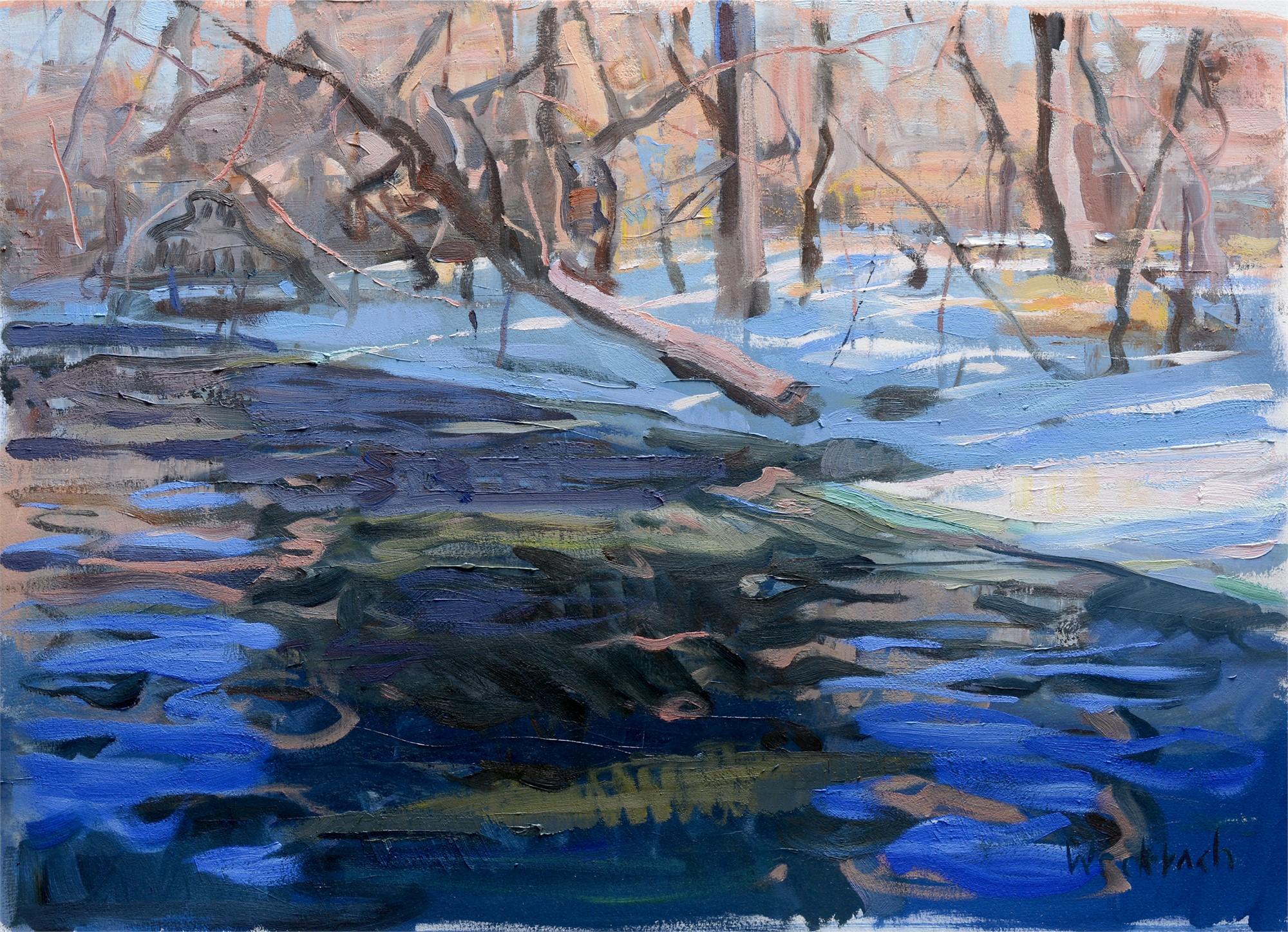 Slantering Tree by Kevin Weckbach