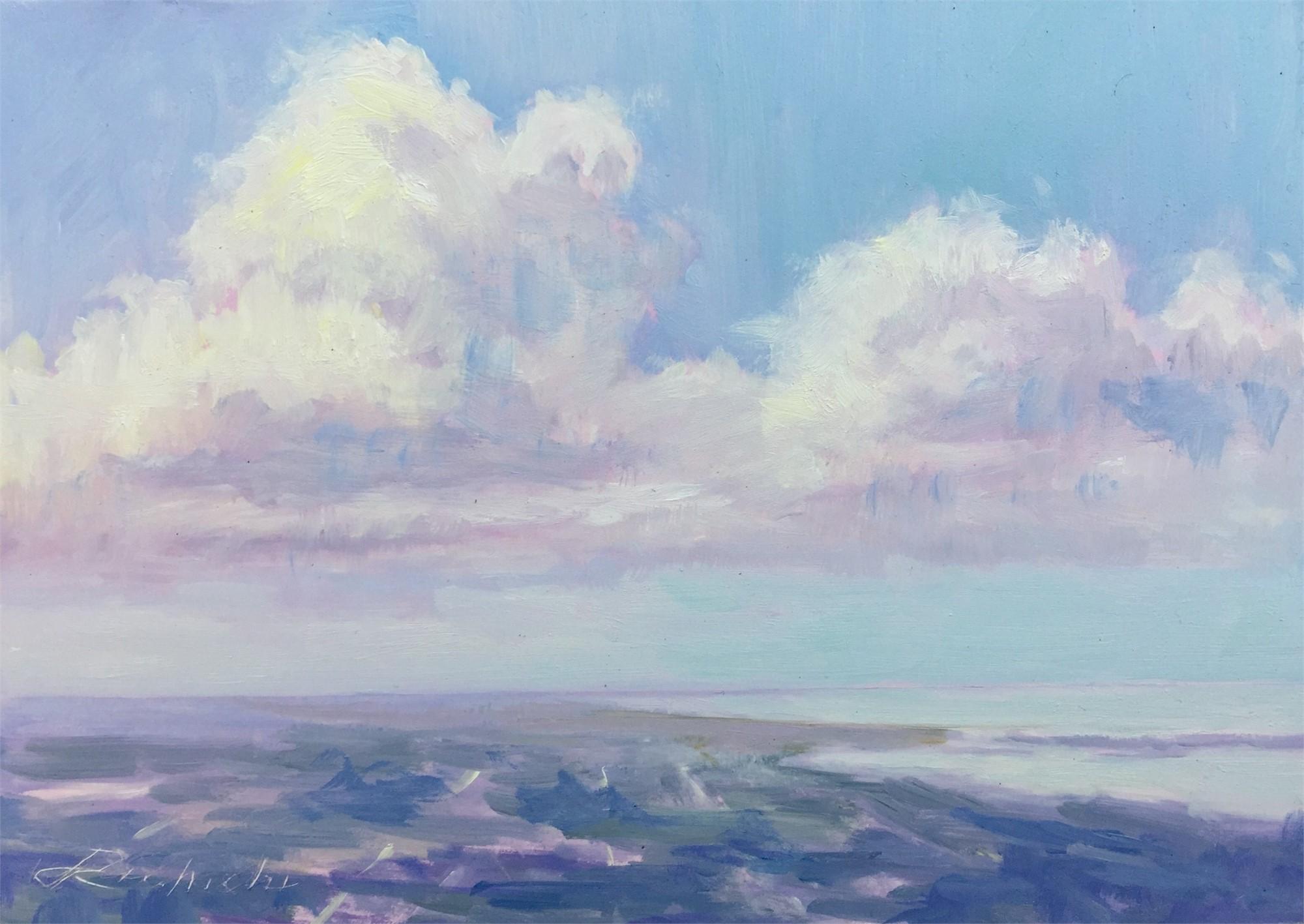 Clouds Above Sarasota by Linda Richichi