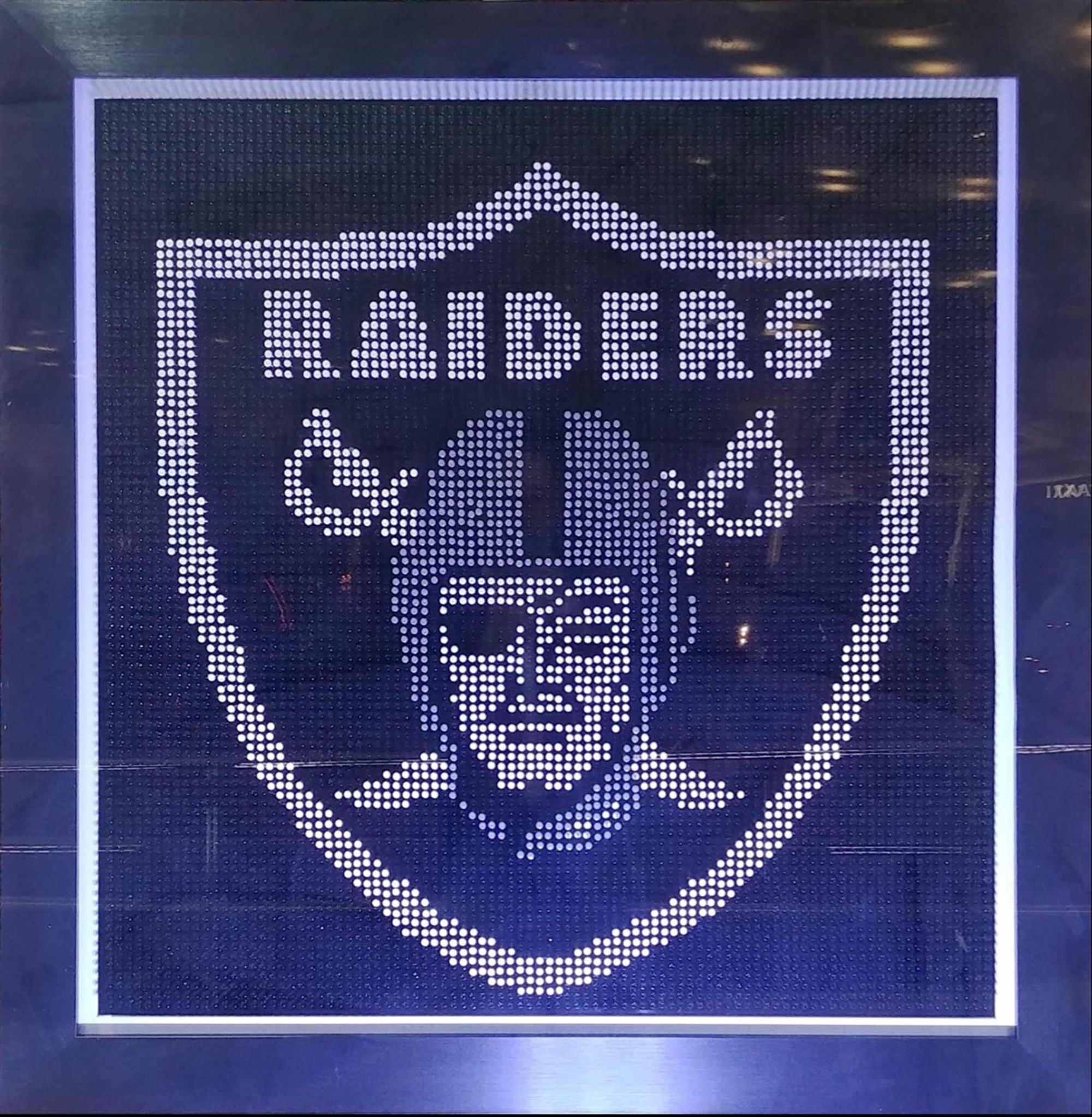 Las Vegas Raiders by Efi Mashiah