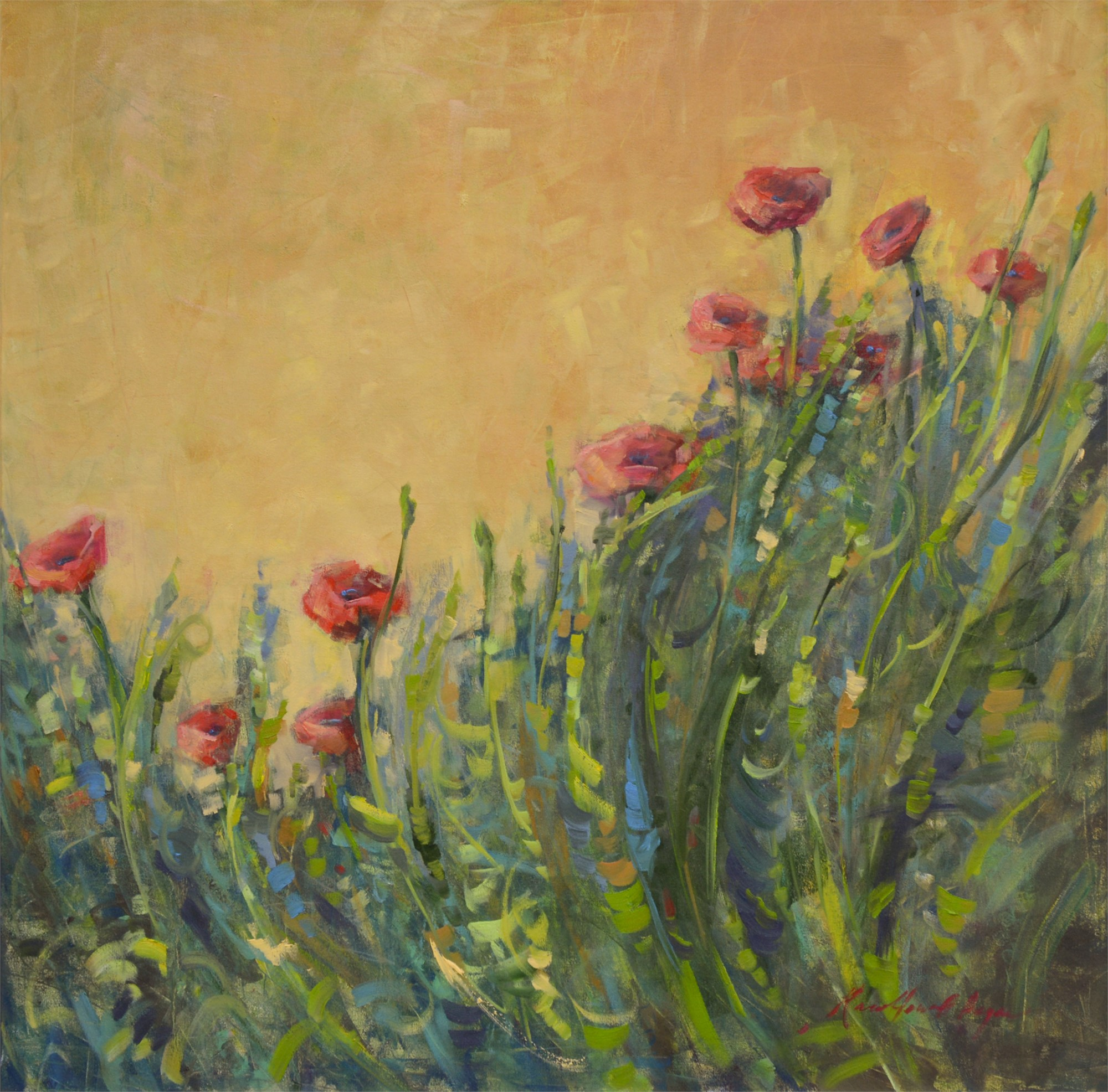 Italian Poppies on a Golden Morning by Karen Hewitt Hagan