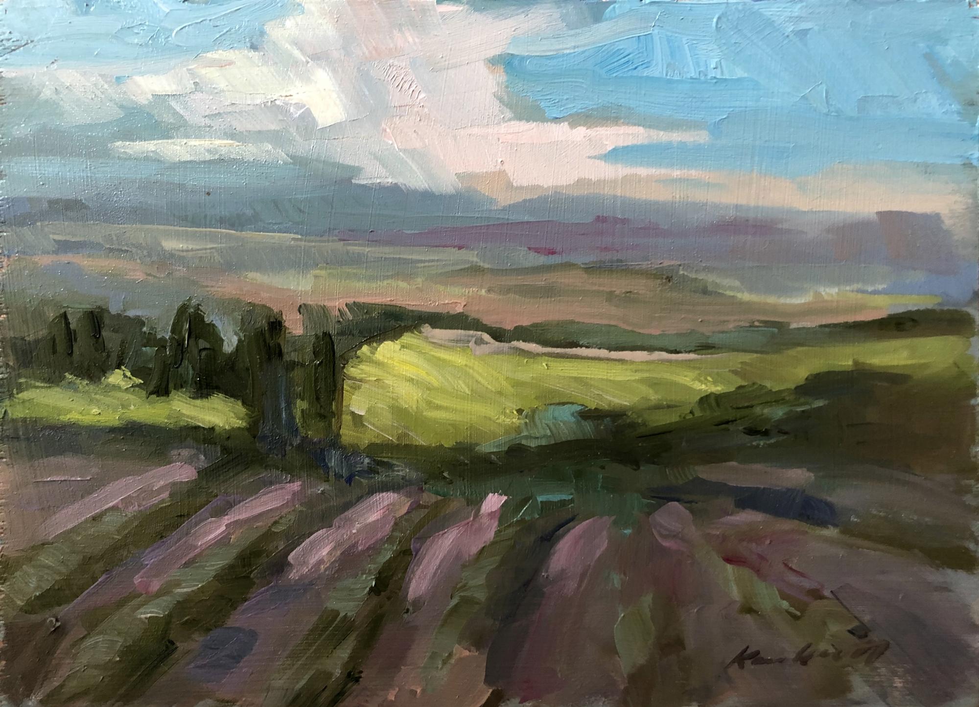 Tuscan Fields Late Spring by Karen Hewitt Hagan