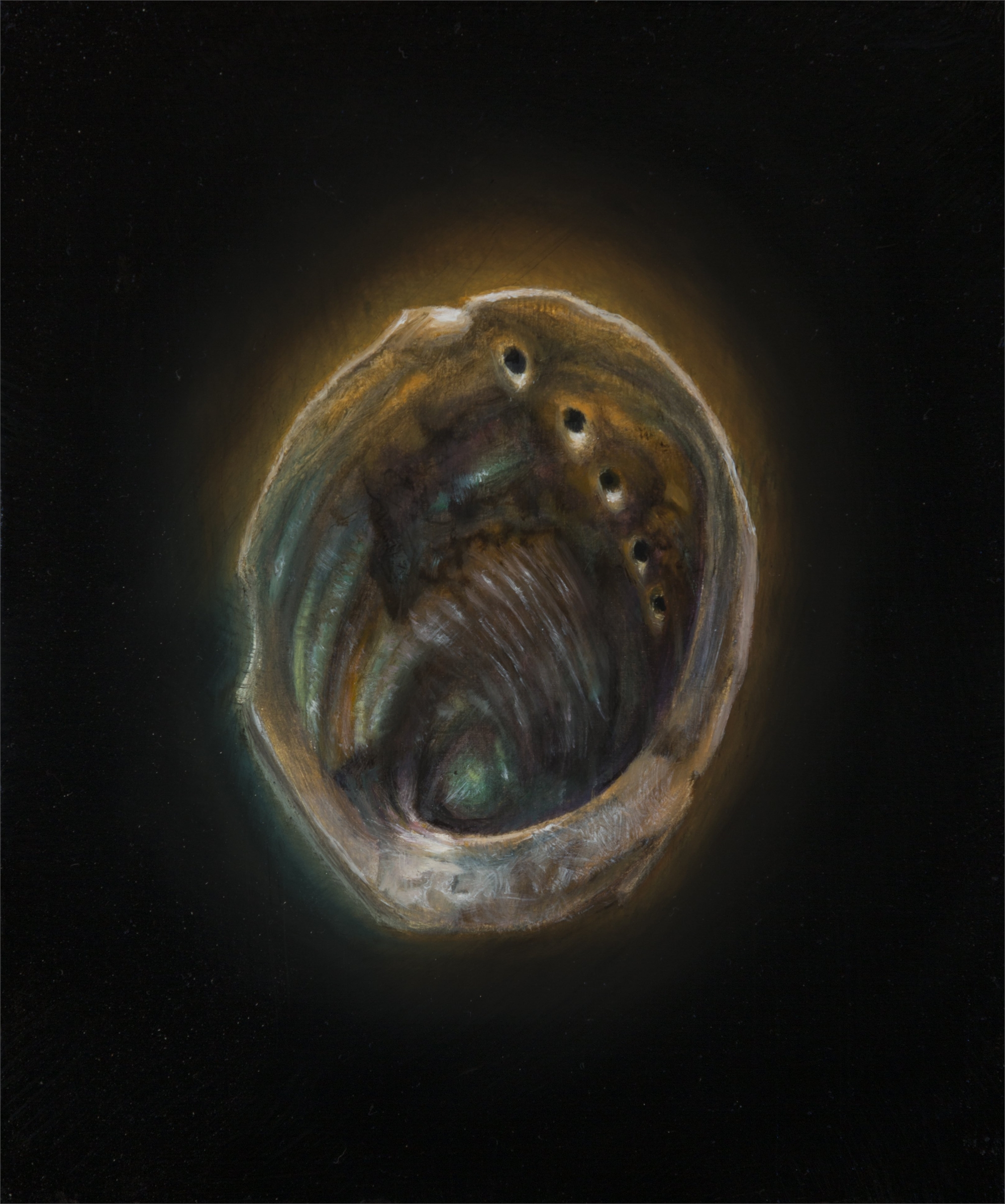 Shell 14 by Gregory Block