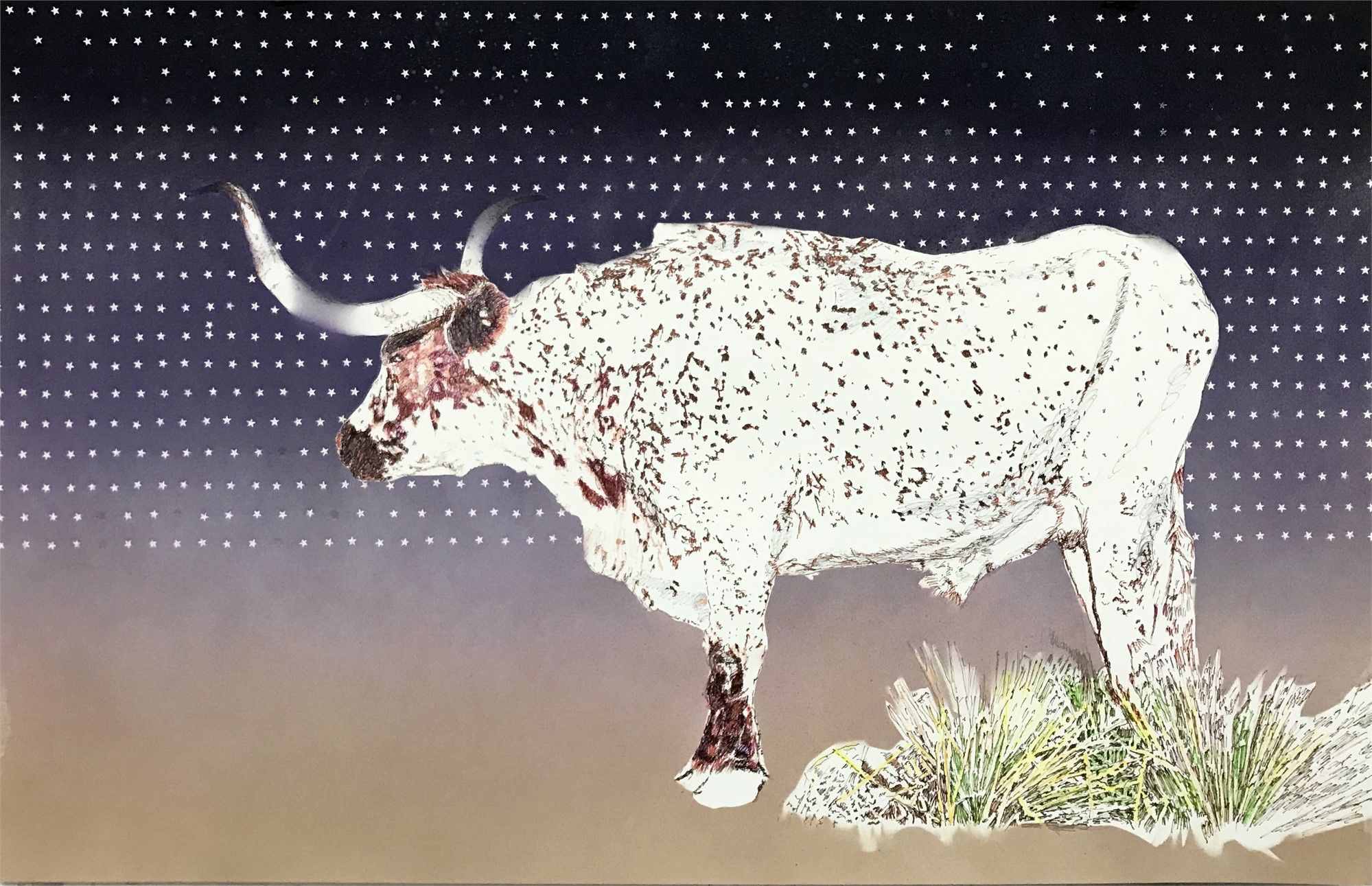 Starry Knight by Jim Malone