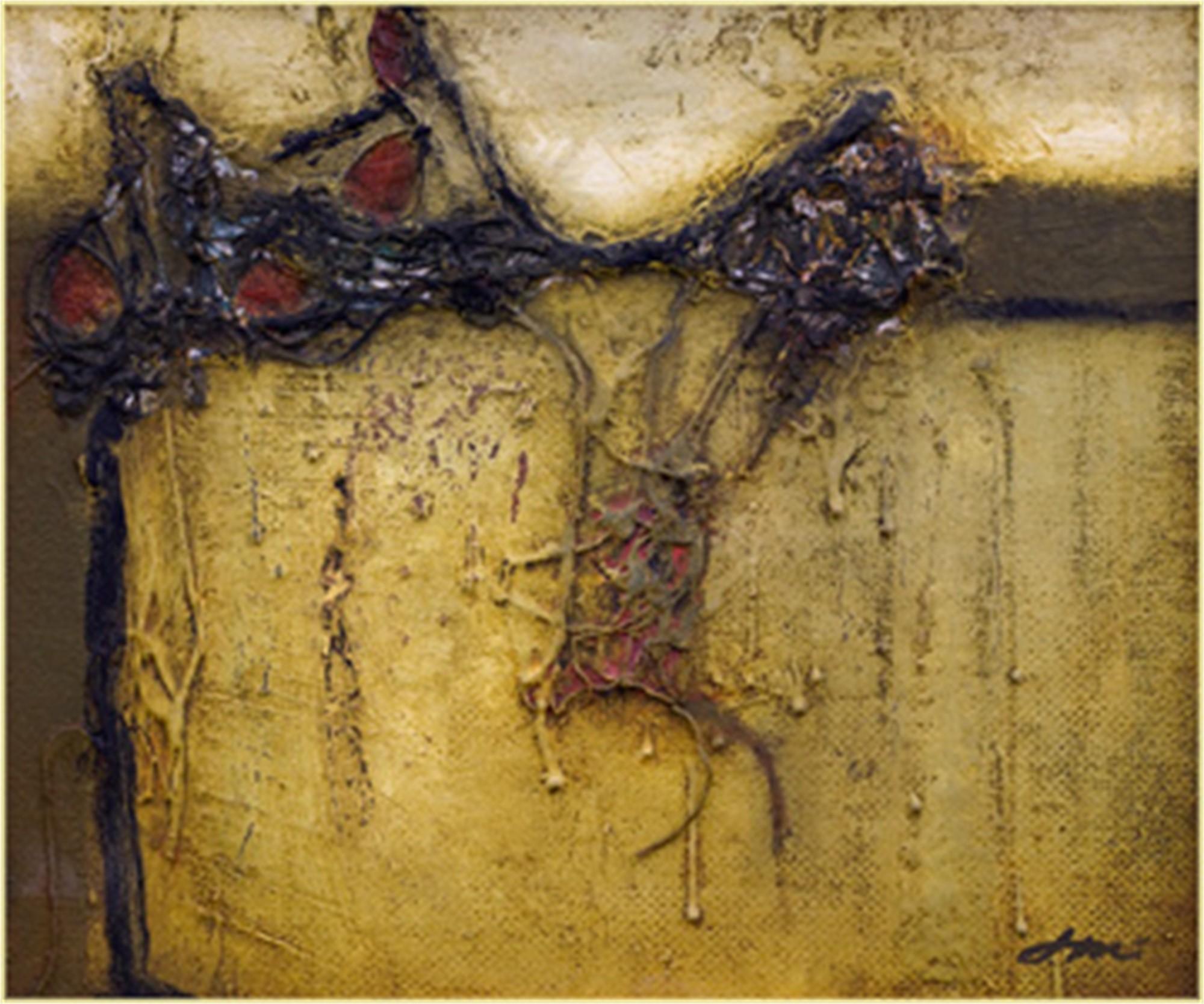 Illuminate by John McCaw