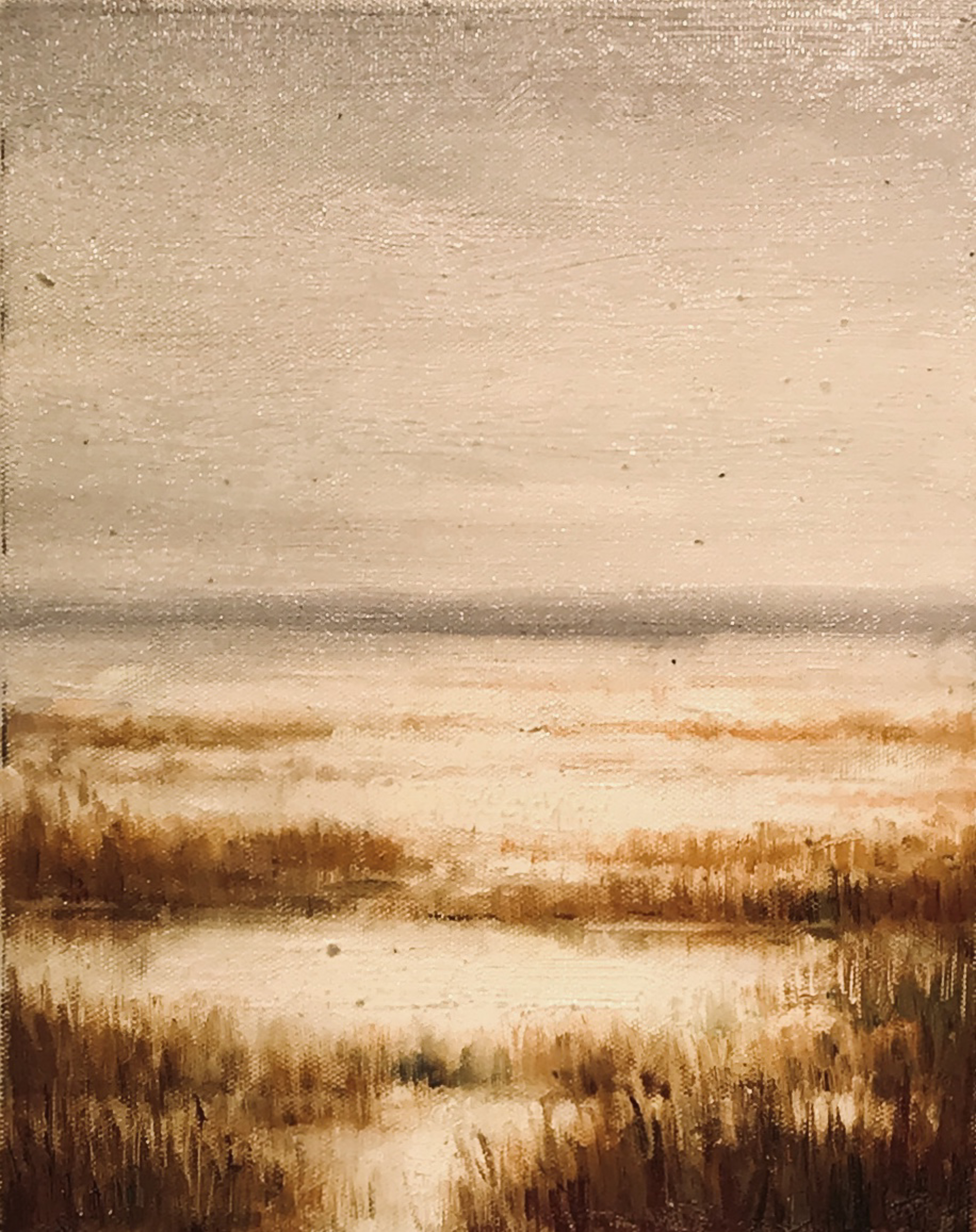 LOOSE BEACHSCAPE by VARIOUS WORKS