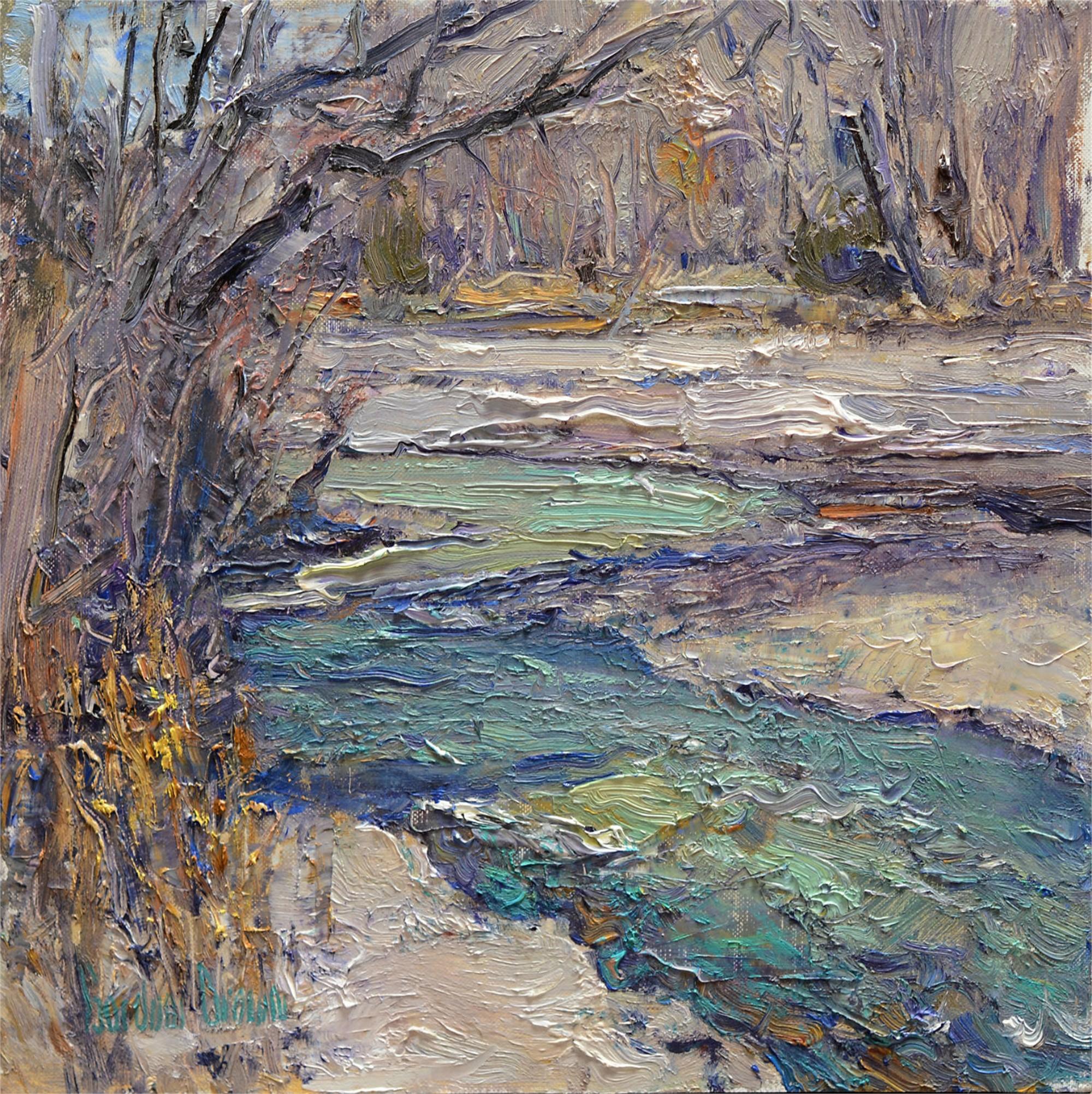 San Juan Creek by Gordon Brown