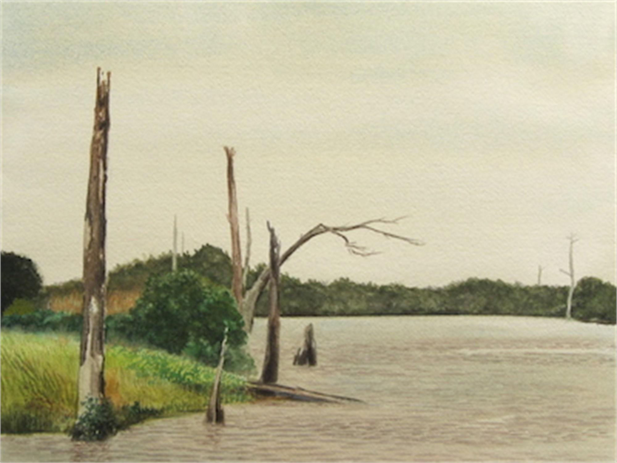 Neches River #2 by Ken Mazzu