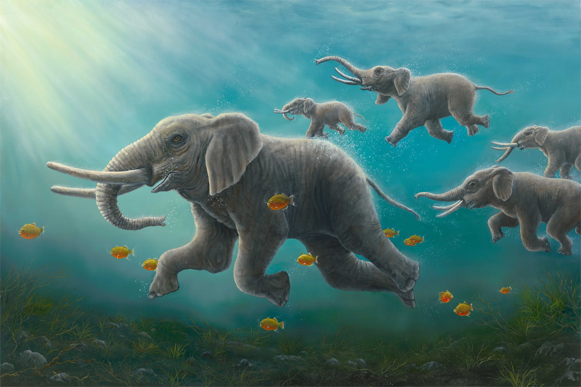 The Race by Robert Bissell
