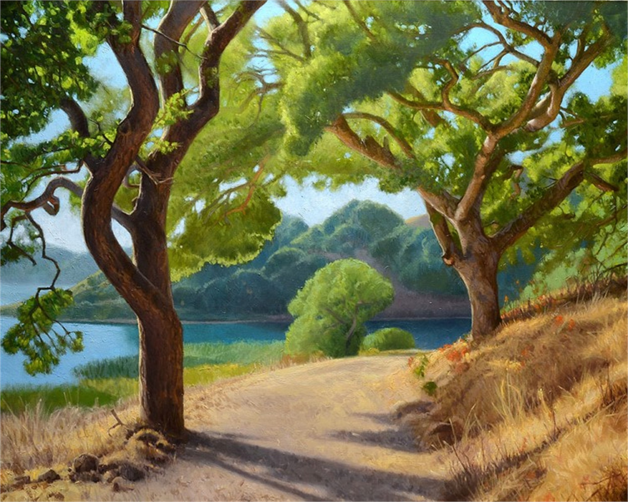 Oak Trees and Afternoon Light by Ocean Quigley