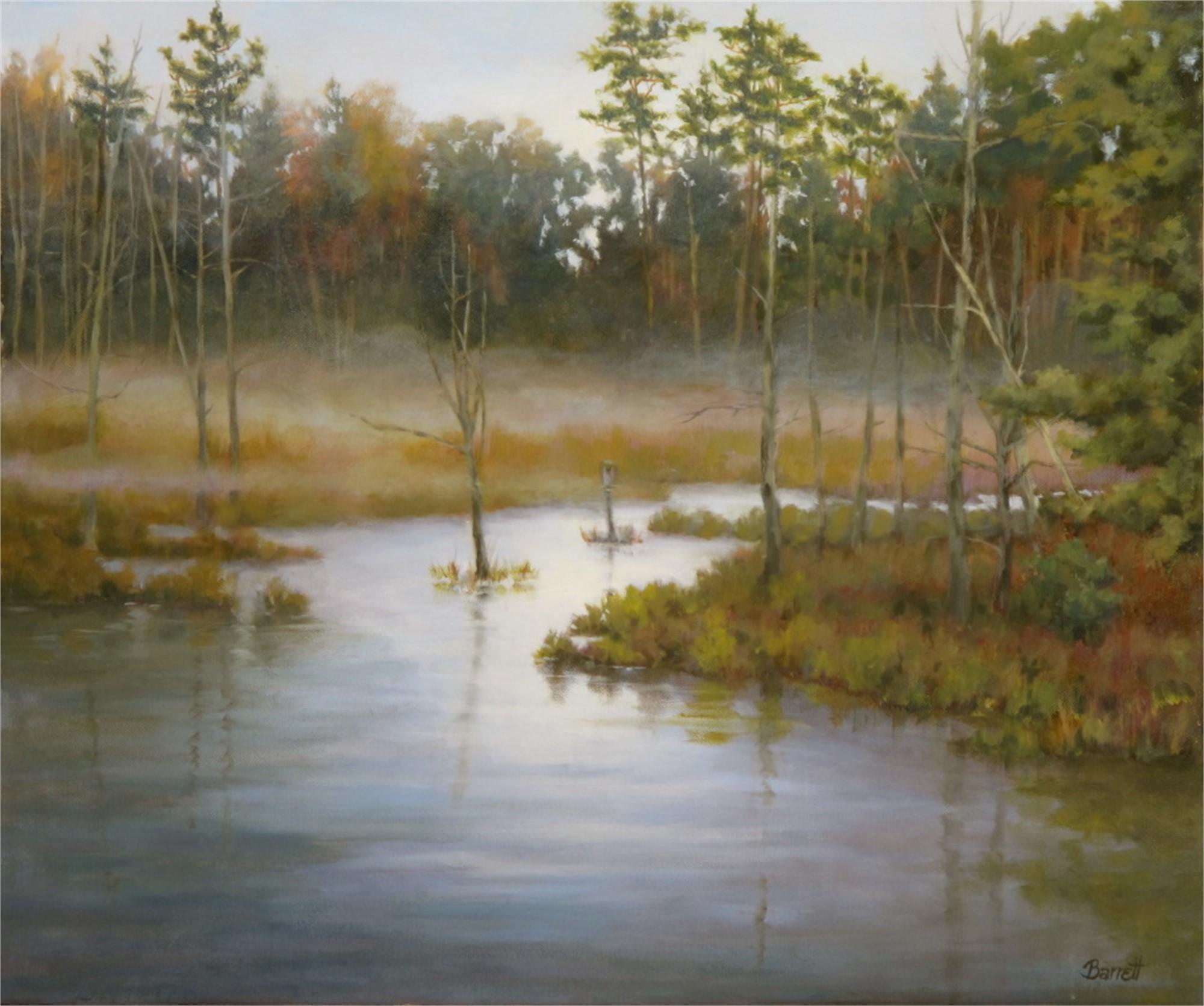 Dawns Silence by Barrett Edwards