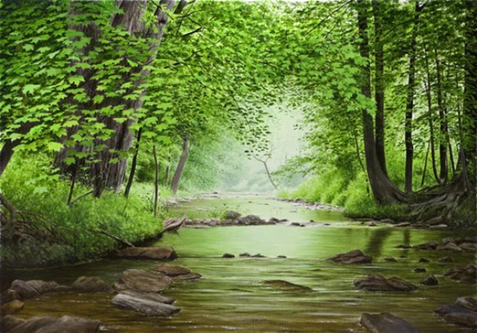 Summer Creek by Alexander Volkov