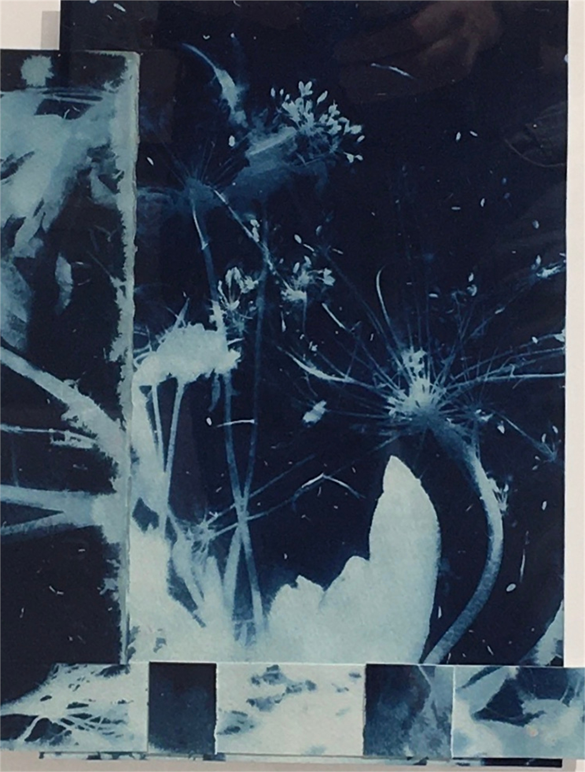 Cyanotype Collage #1 by Colleen Metzger
