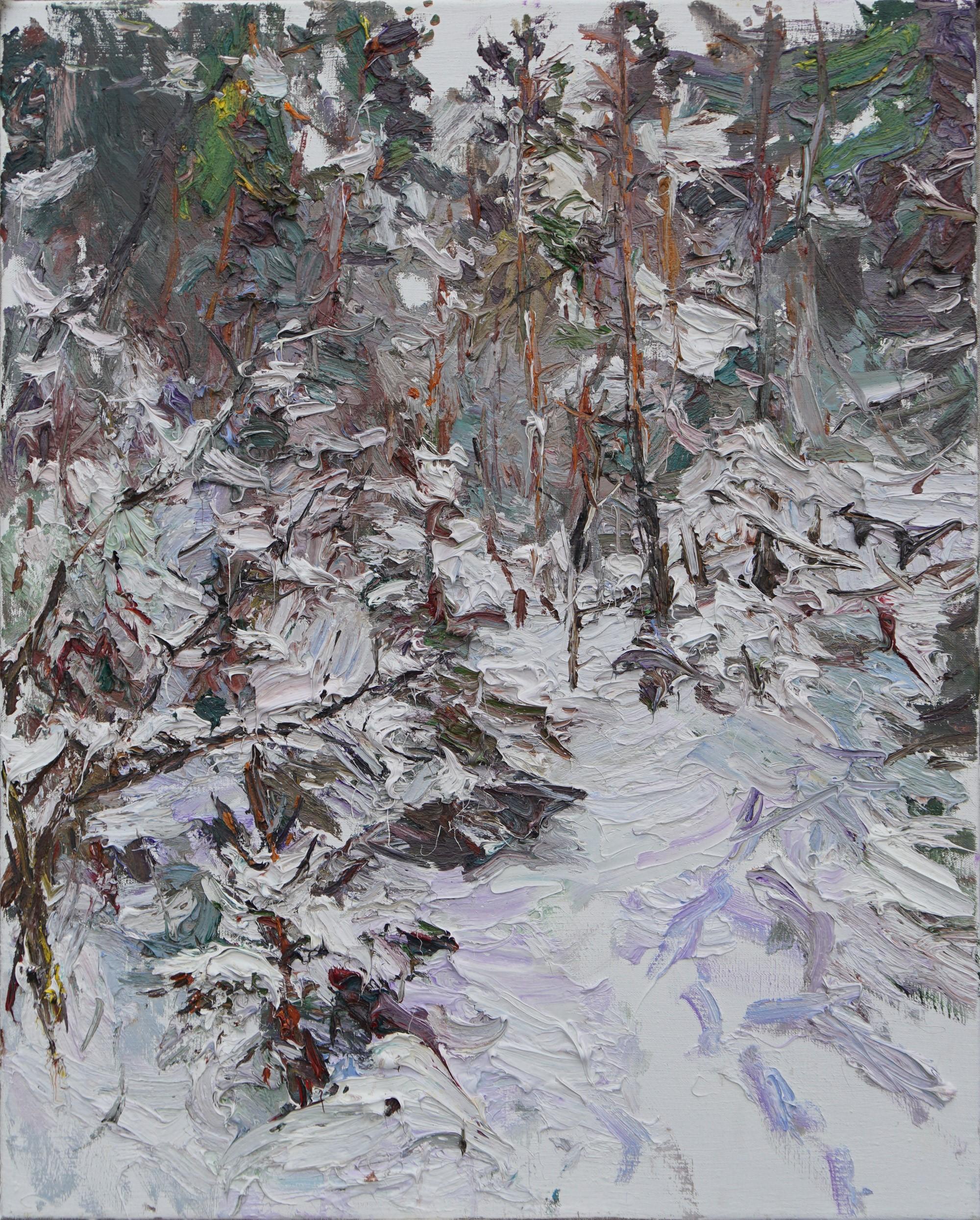 Heavy Snow, Karelia by Ulrich Gleiter