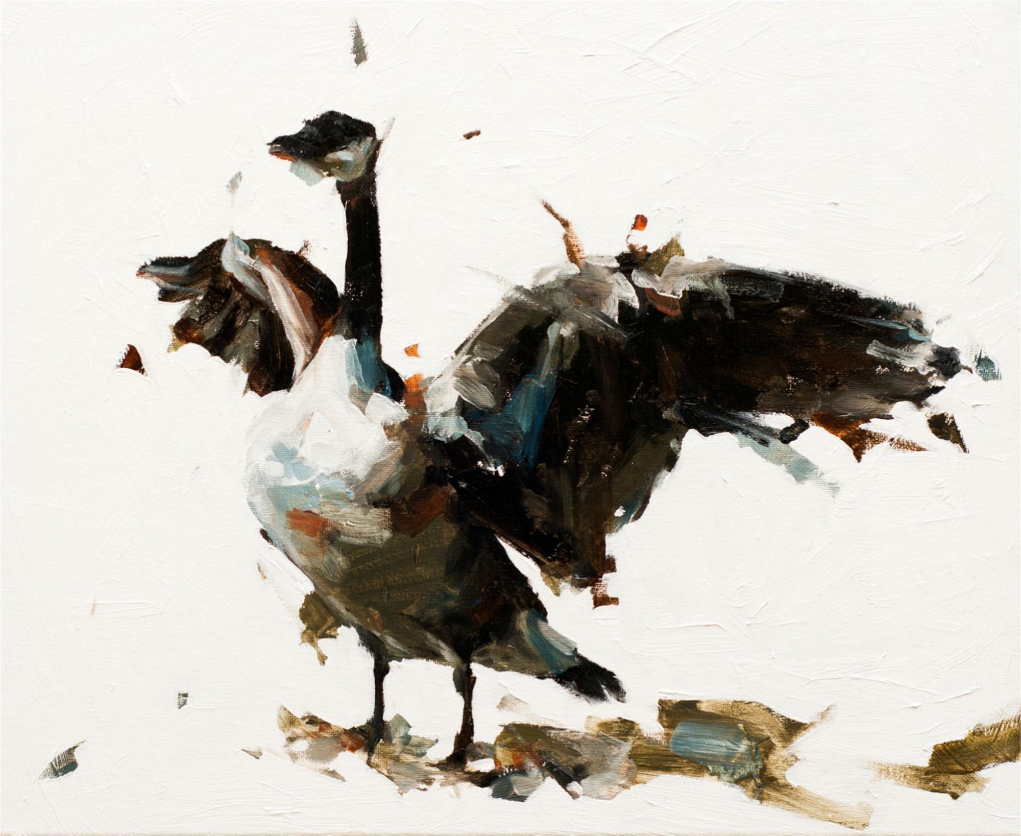 Goose III by Thibault Jandot
