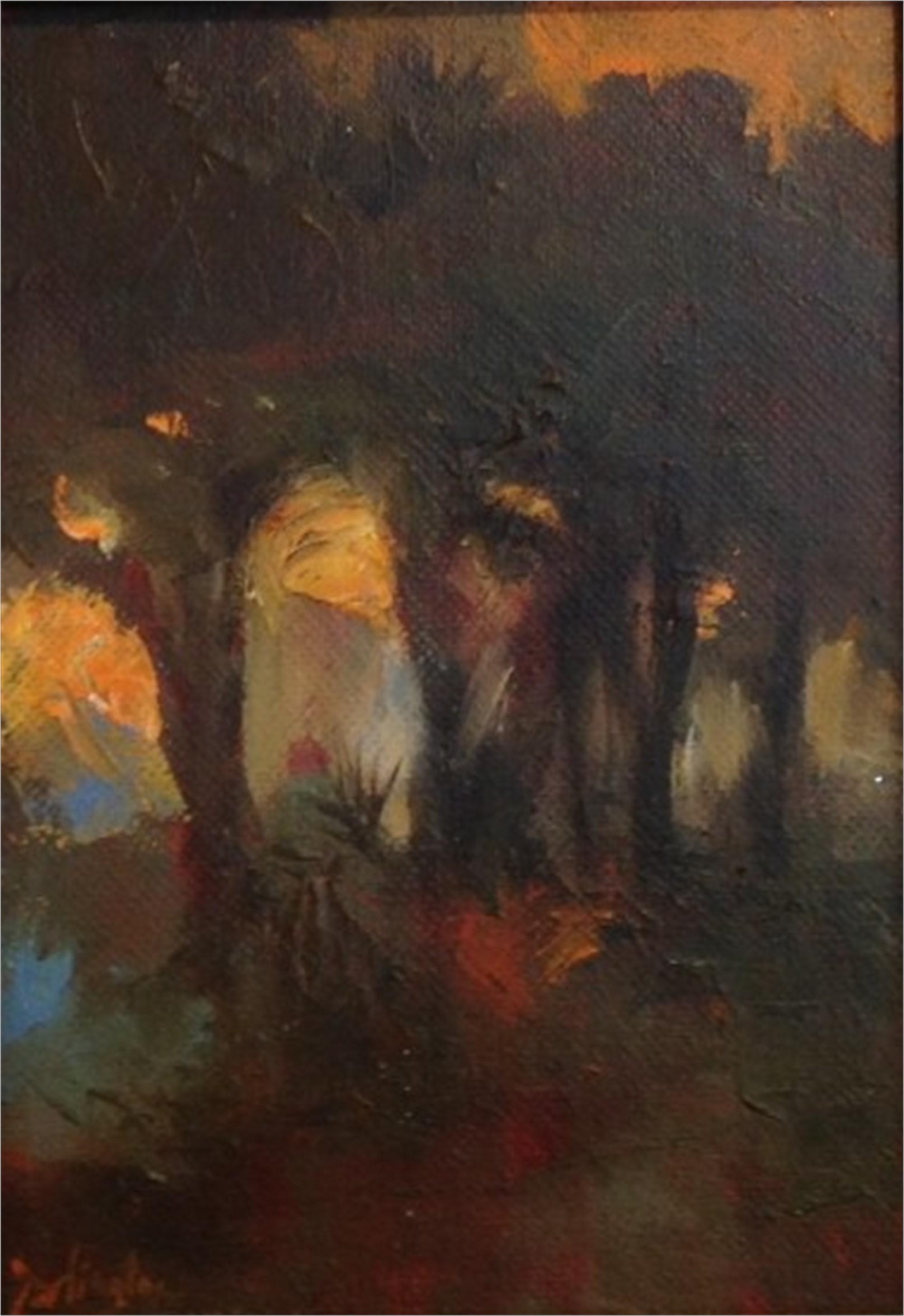Palmetto Sunset by Jim Darlington