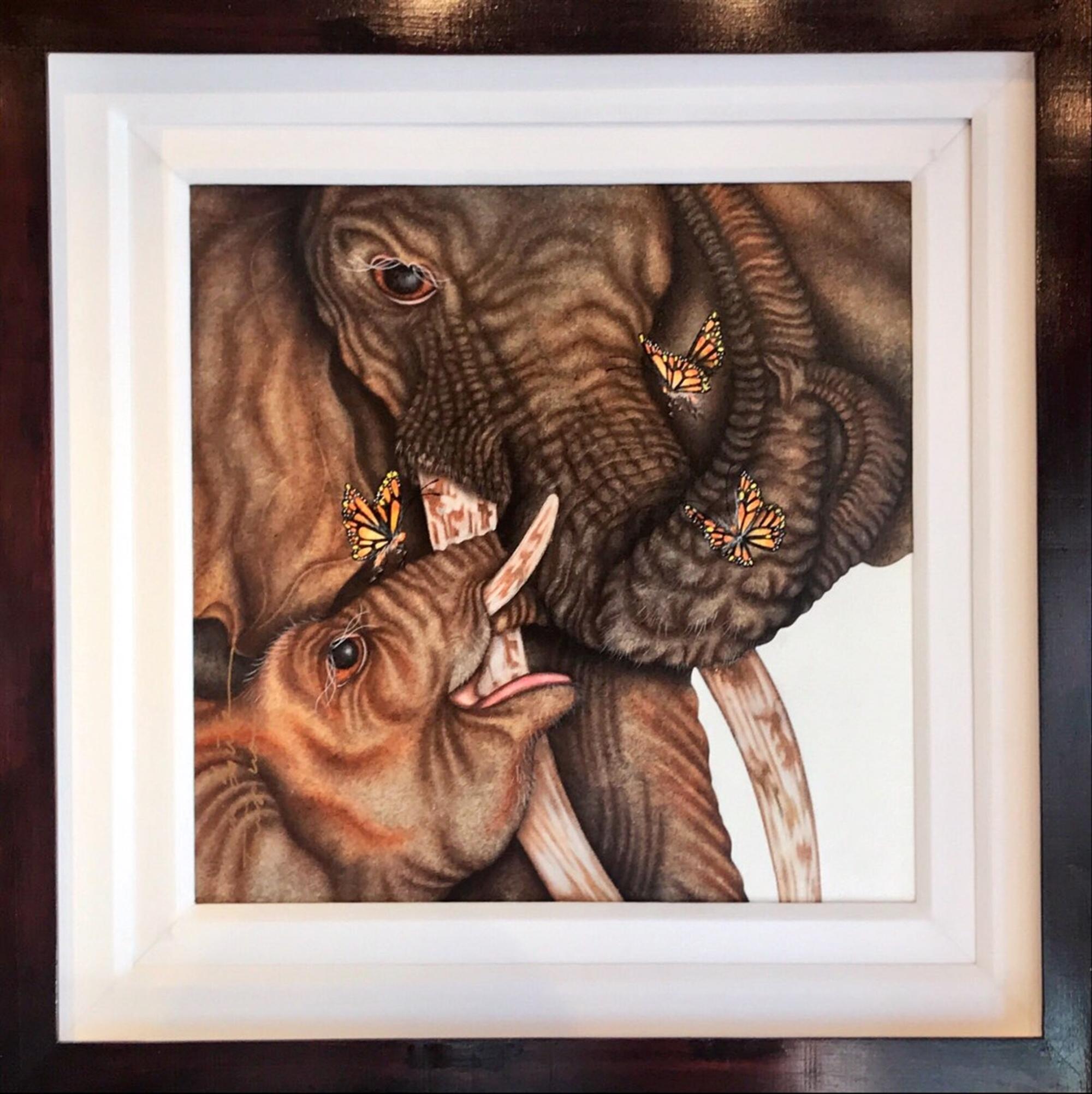 Elephant Sanctuary by Luis Sottil