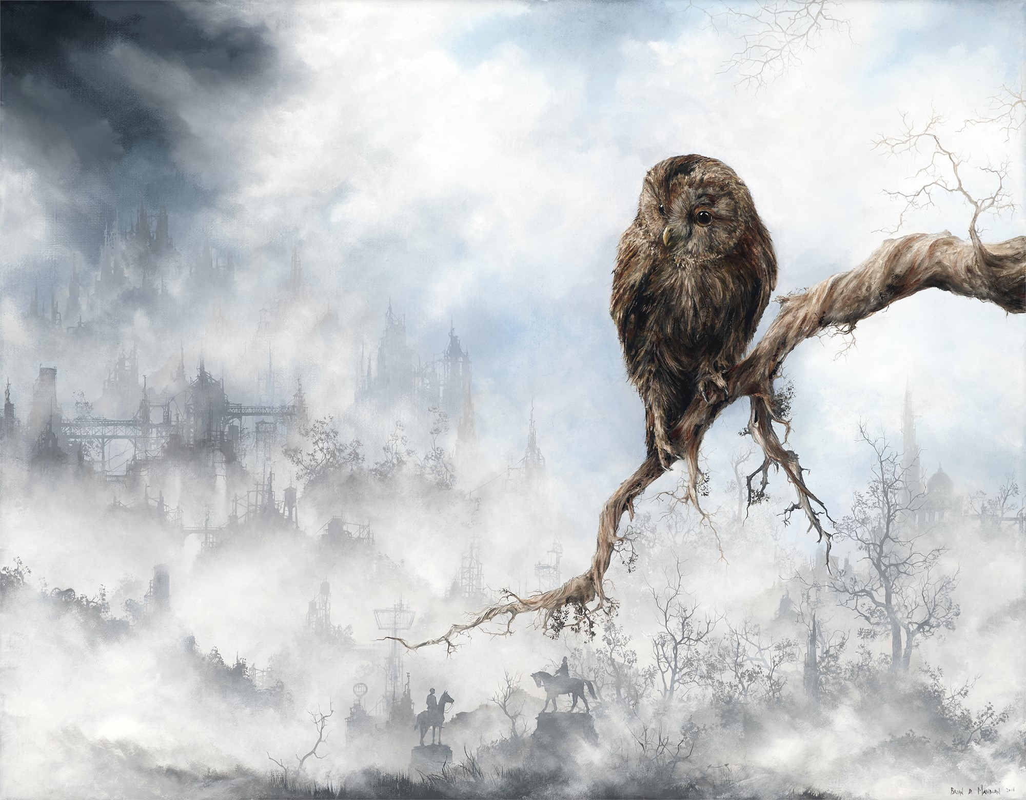 Tawny Owl by Brian Mashburn