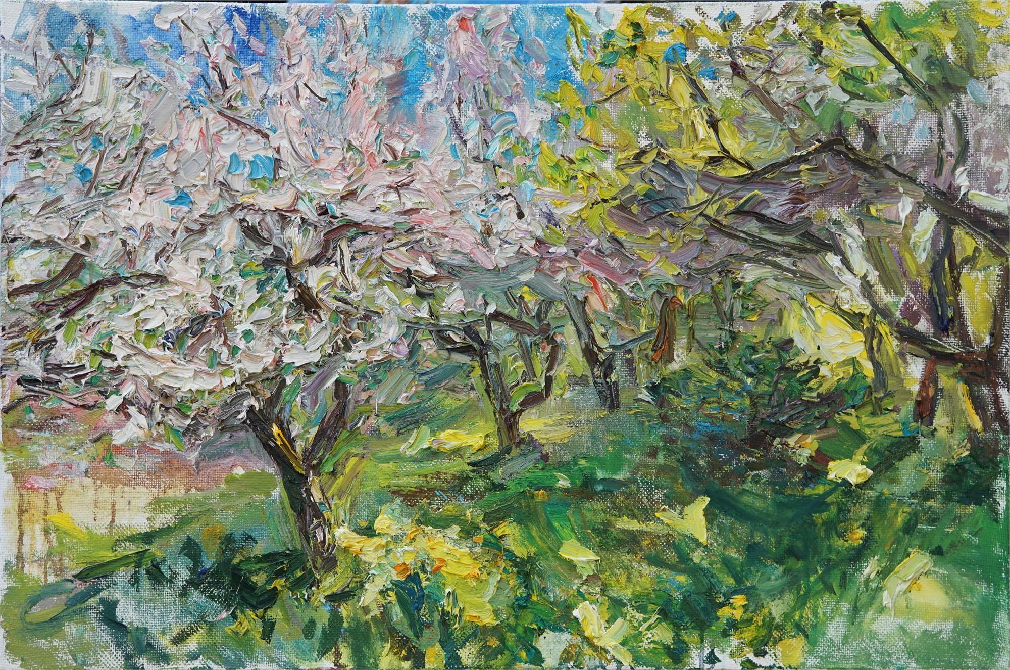 Cherry Blossom by Ulrich Gleiter