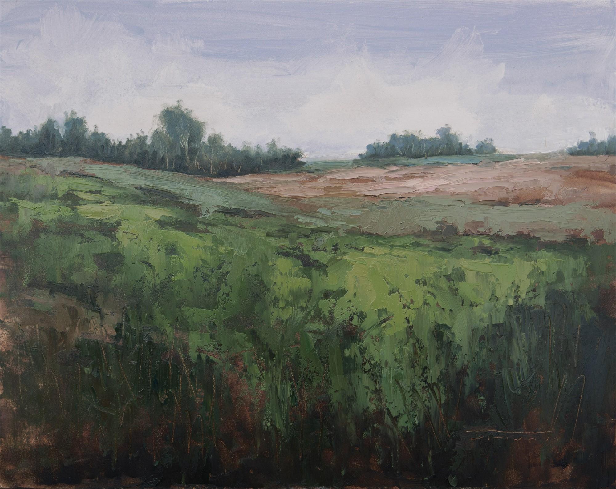 Door County Farmland by Jane Hunt
