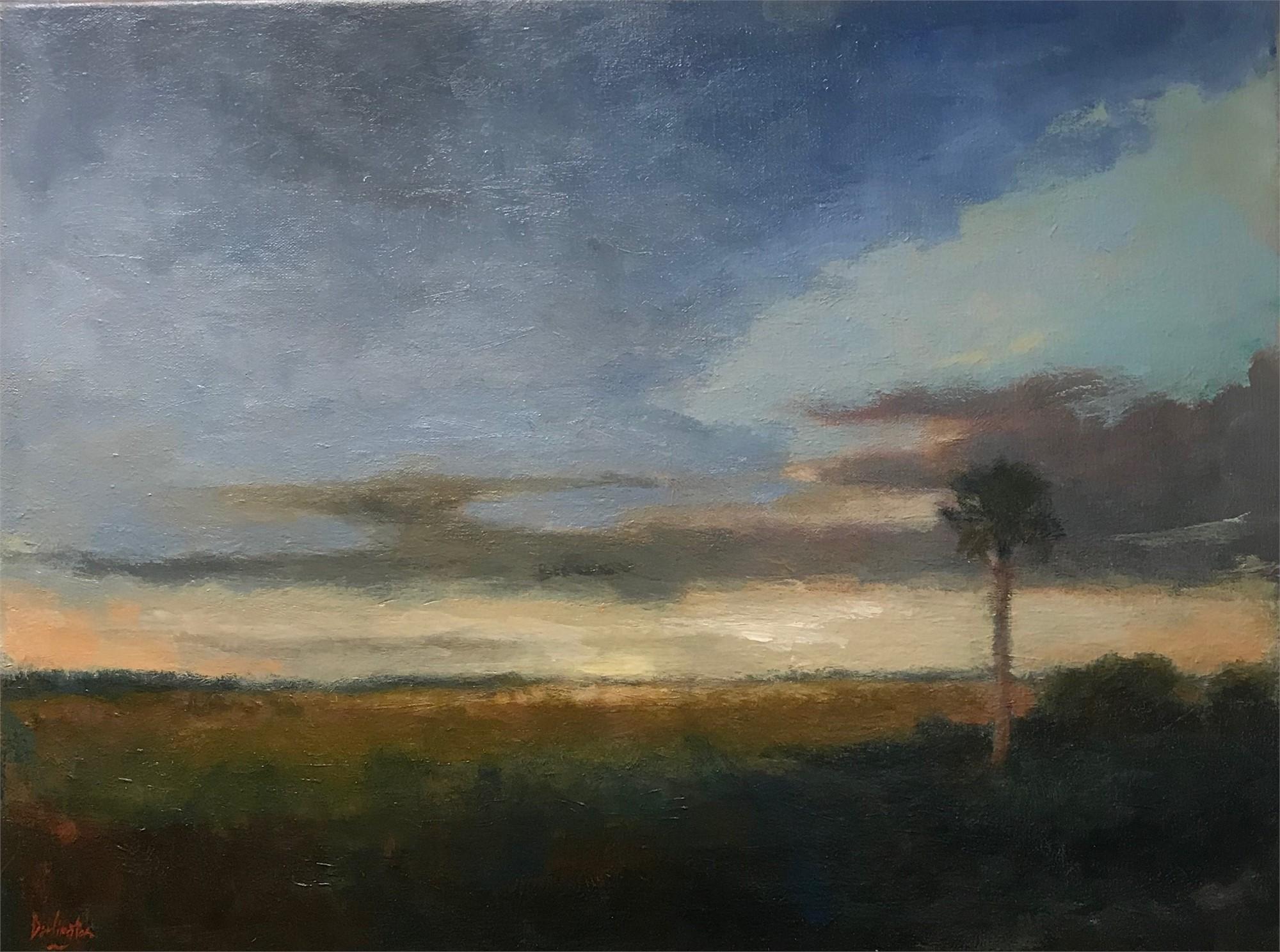 Santee Delta Sunrise by Jim Darlington