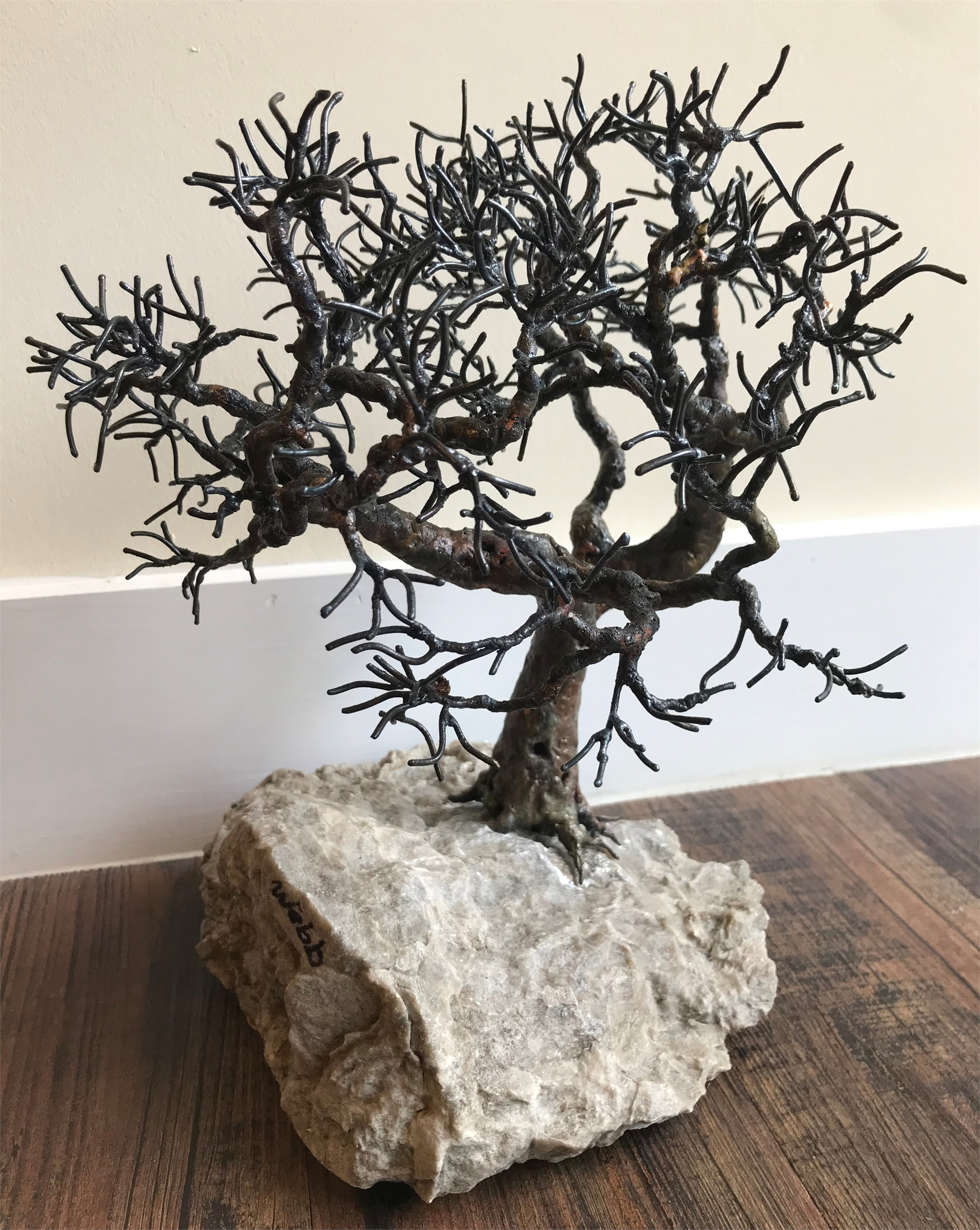 Texas Post Oak by Bill Webb