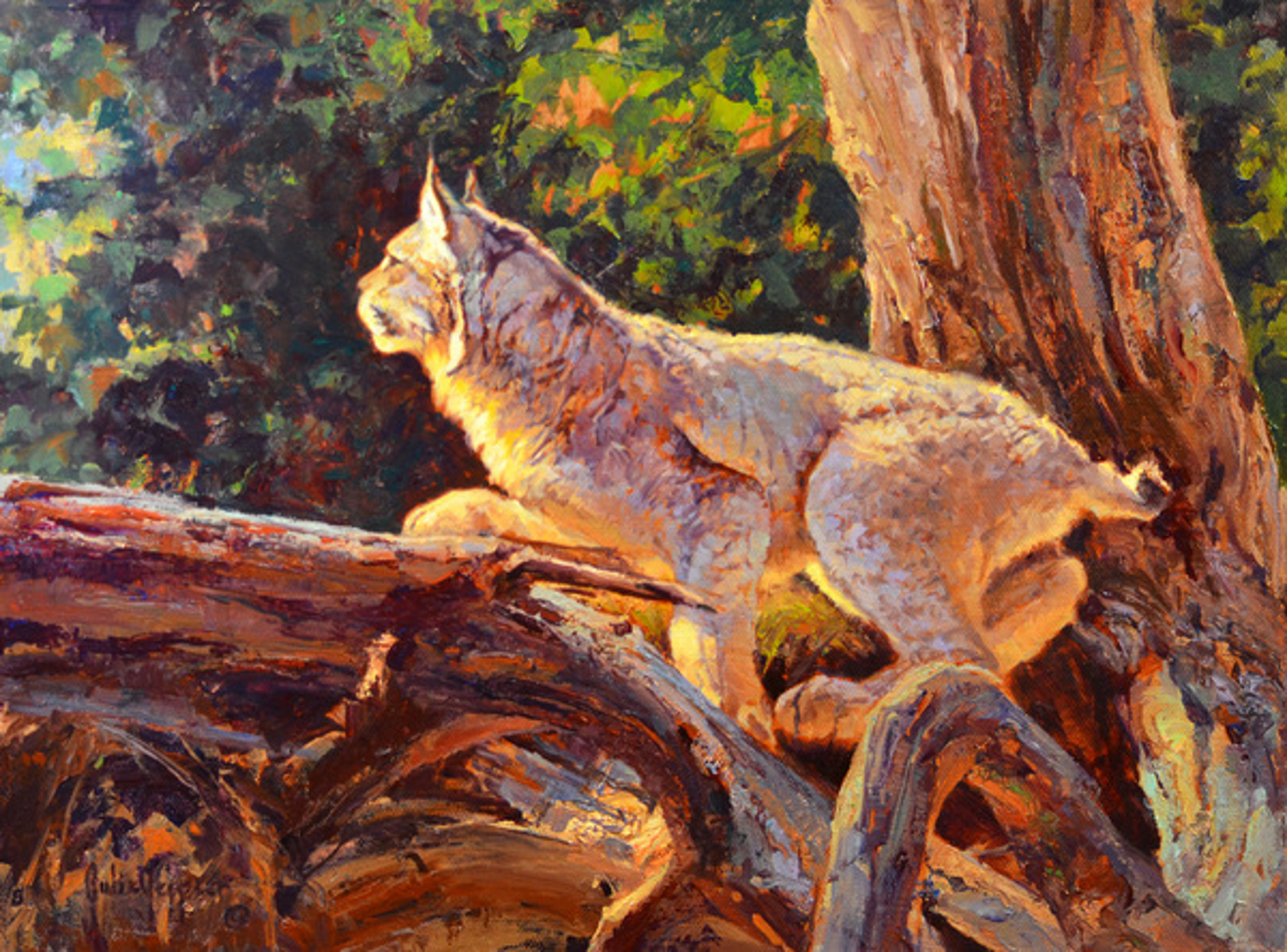 Spring Lynx by Julie Jeppsen