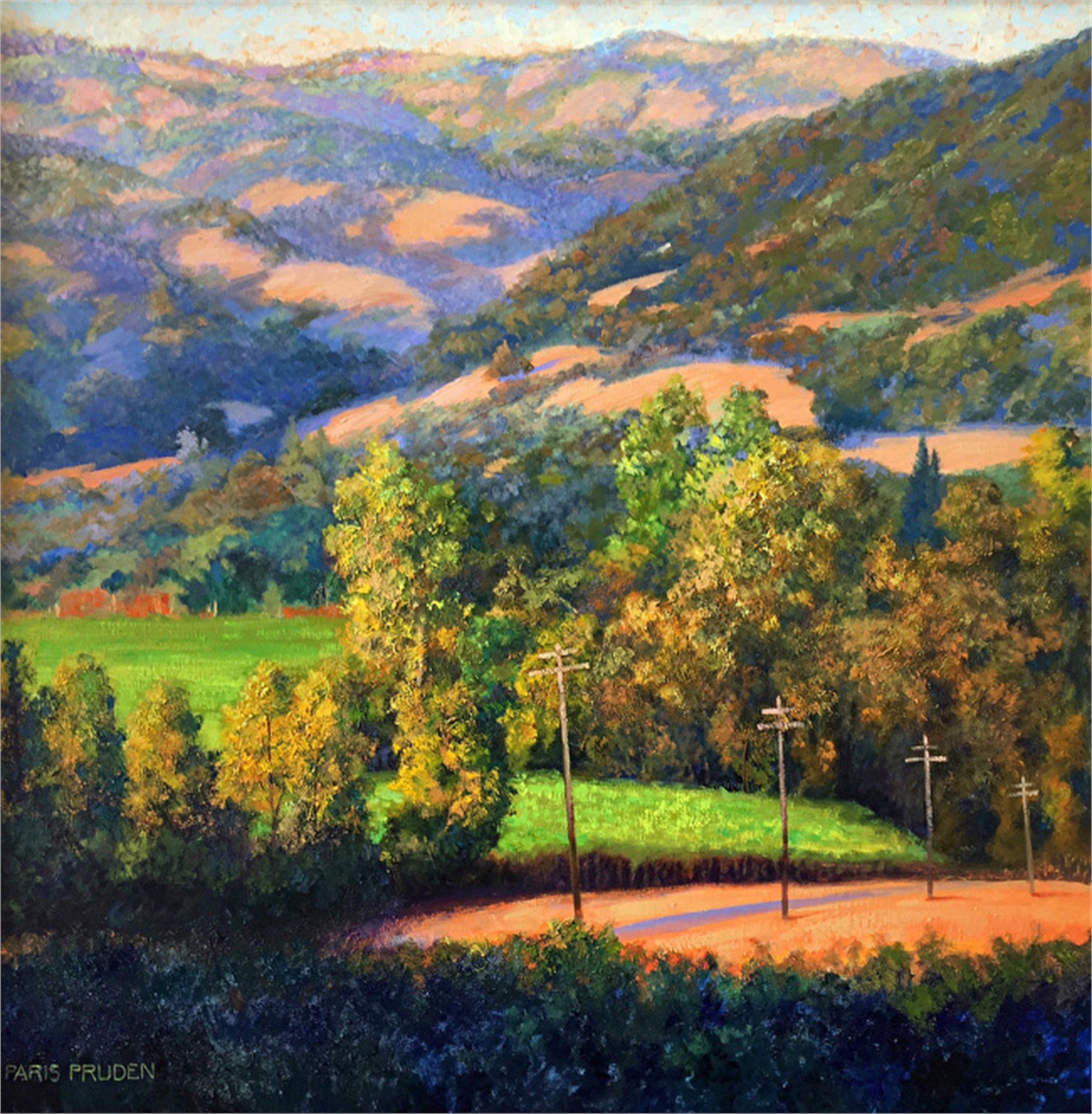 Sonoma Sunset  by Nancy Paris Pruden