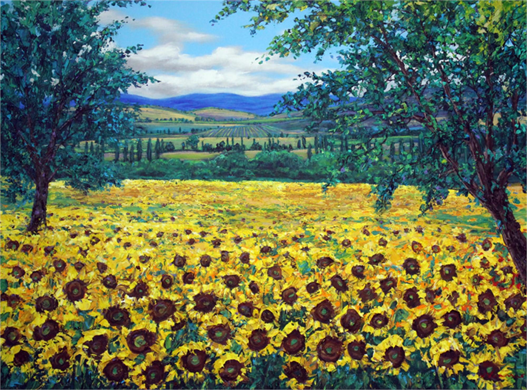 Fields of Sunshine by Jennifer Vranes