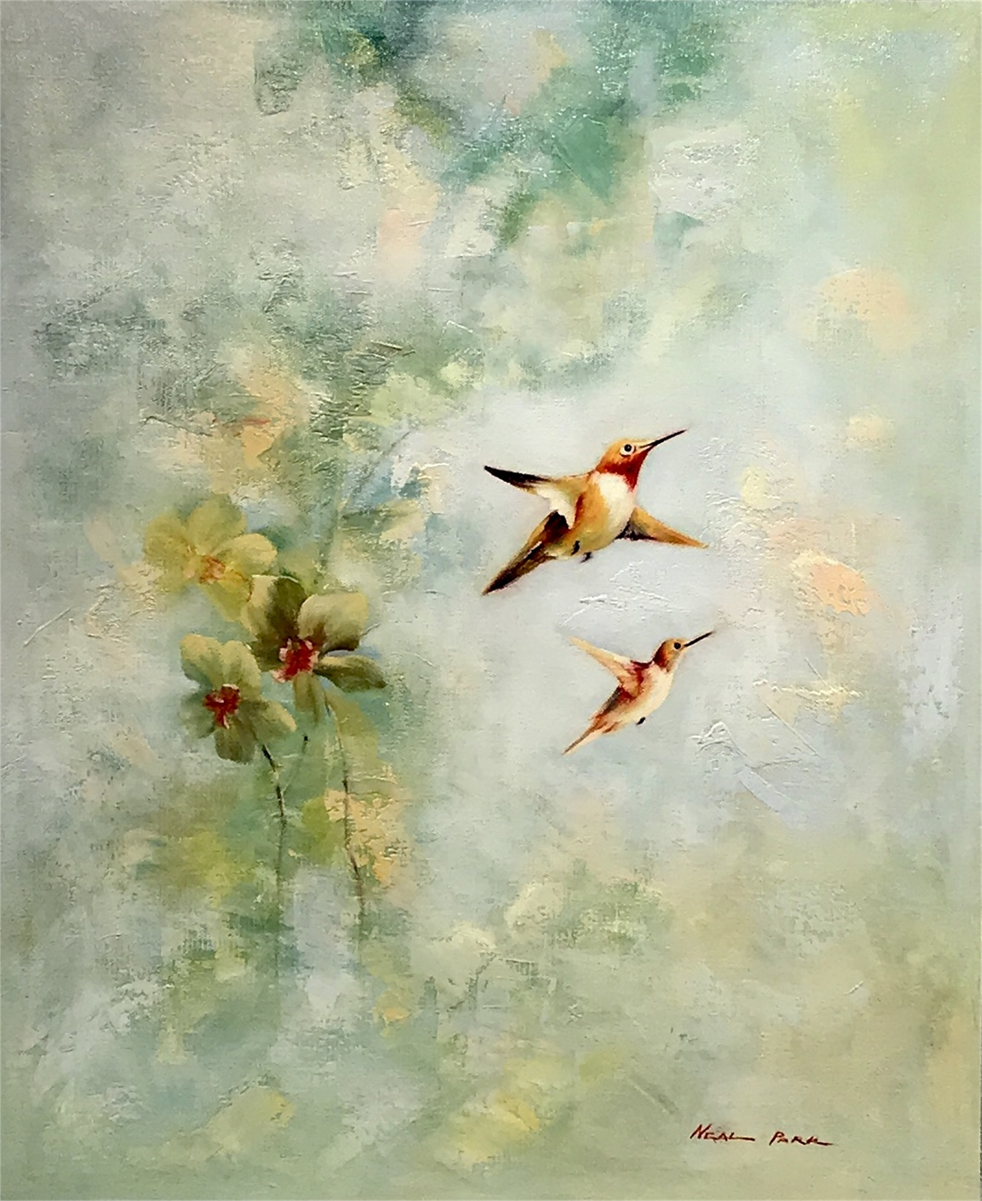 HUMMINGBIRDS by NEAL PARK