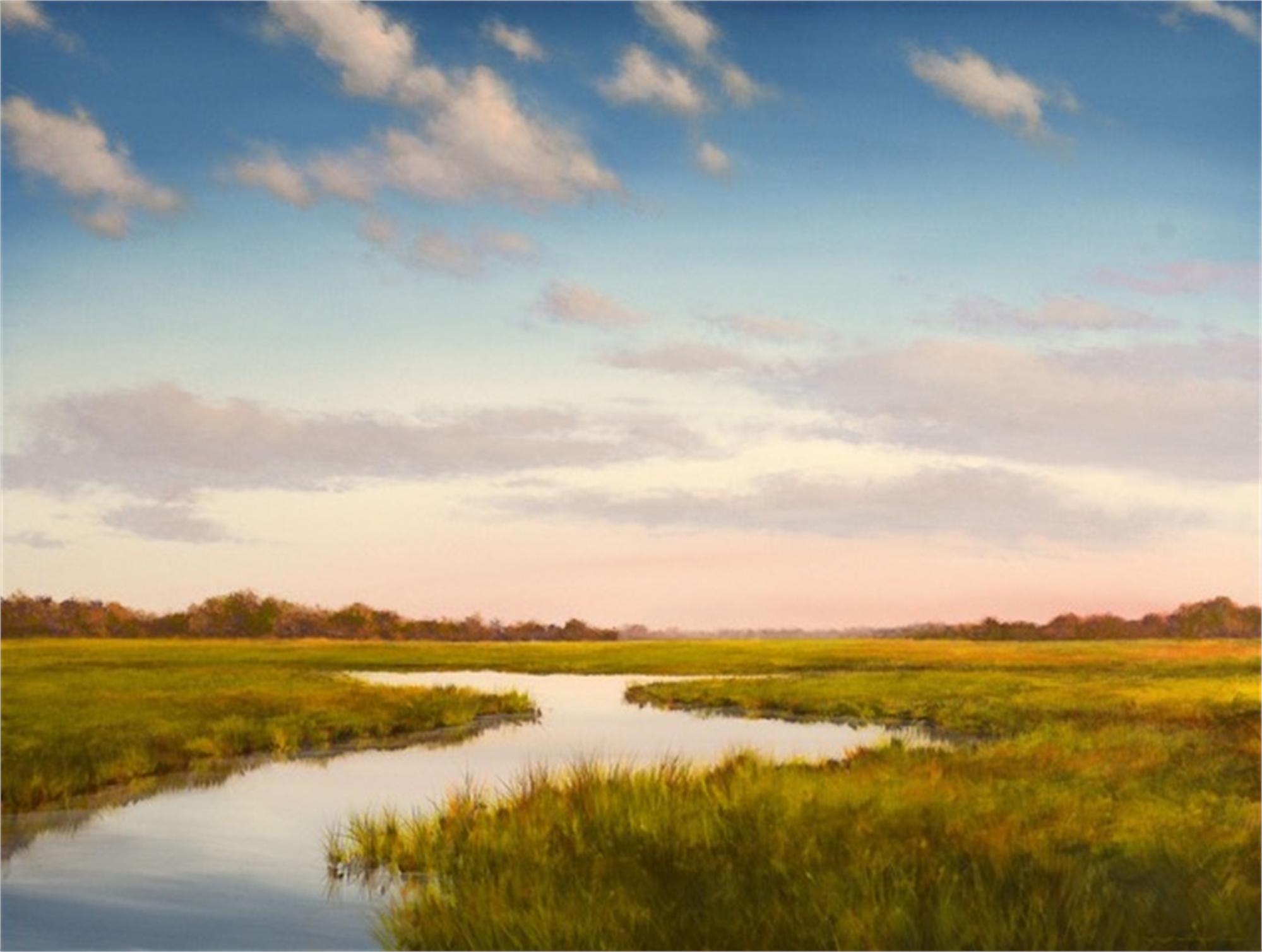 Lowland Duck by David Nance