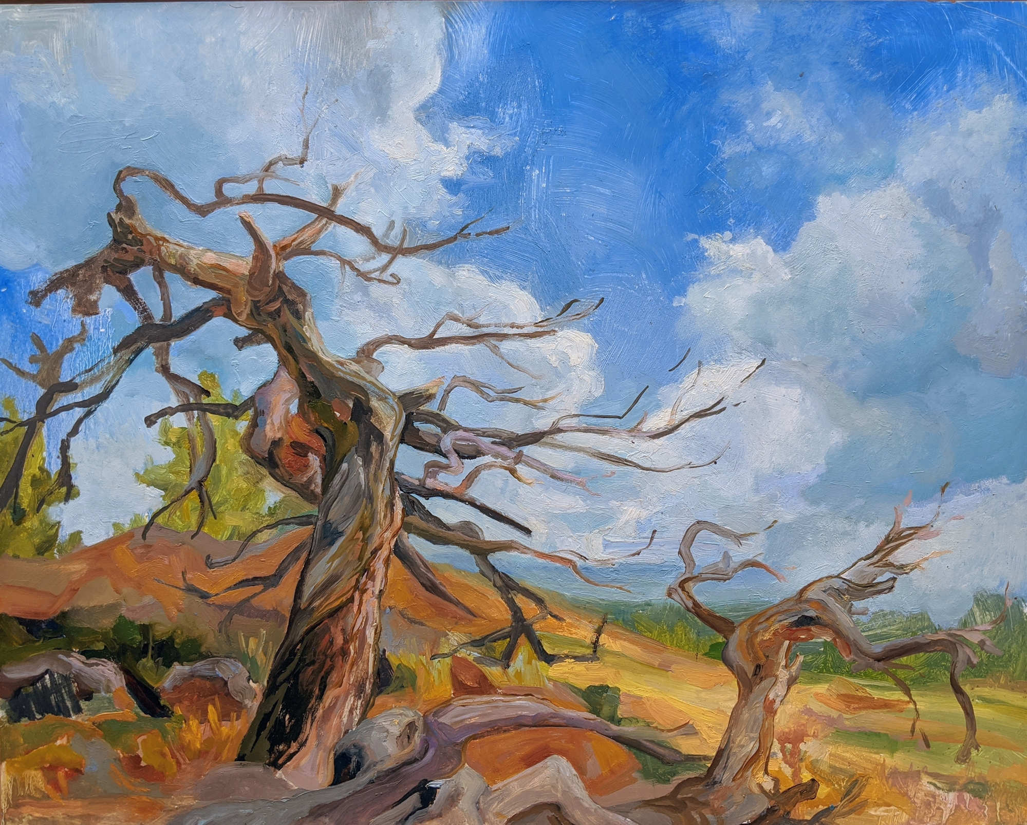Caitlin's Tree by Charis Carmichael Braun