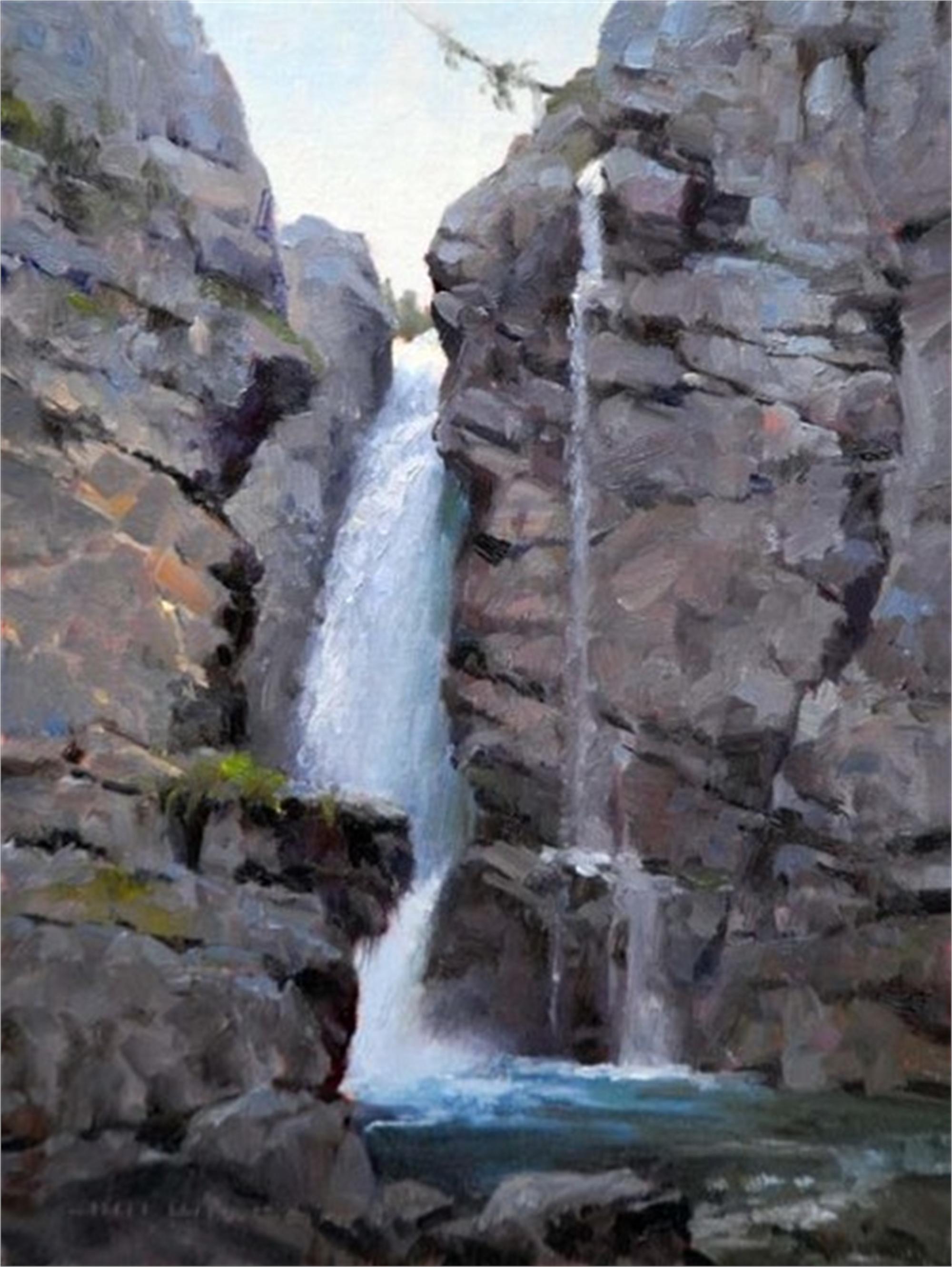Cutting Deep Canadian Waterfall by Jim Wilcox