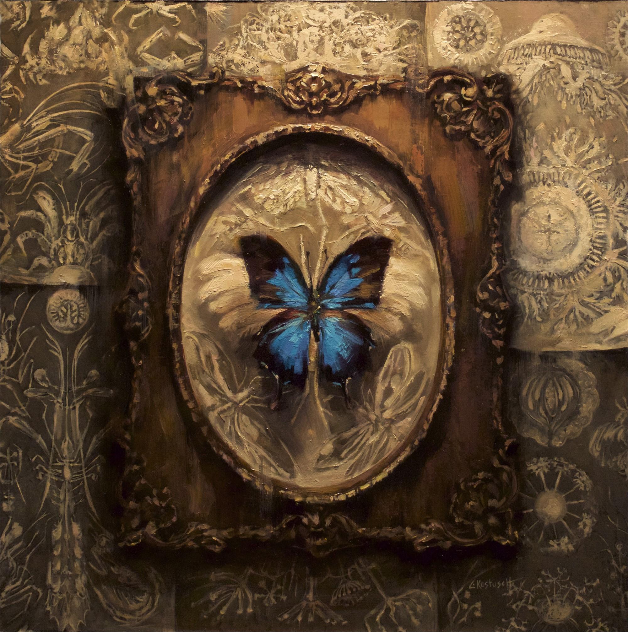 Papilo Ulysses by Lindsey Kustusch