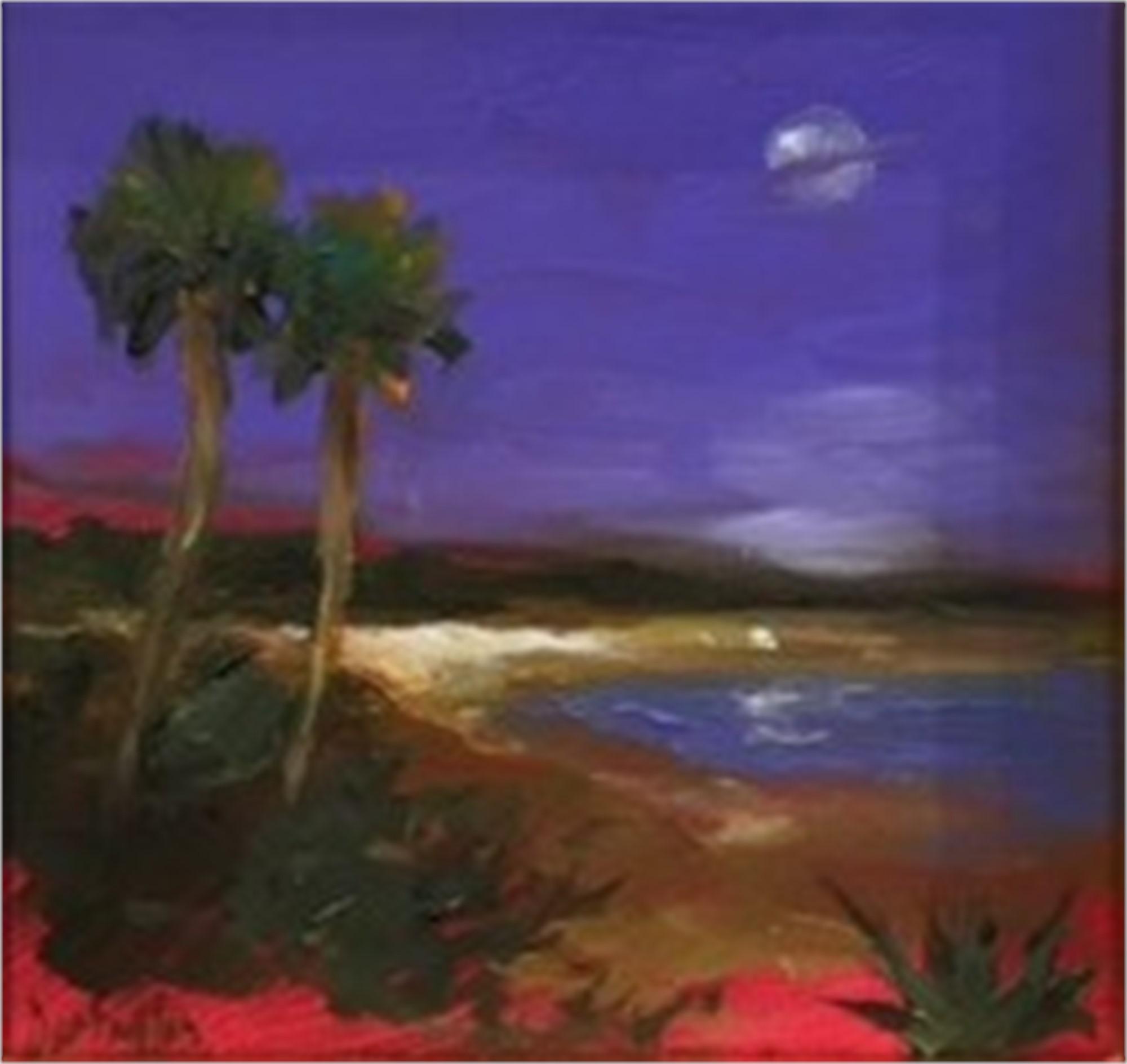 Violet Sky Over the Island by Jim Darlington