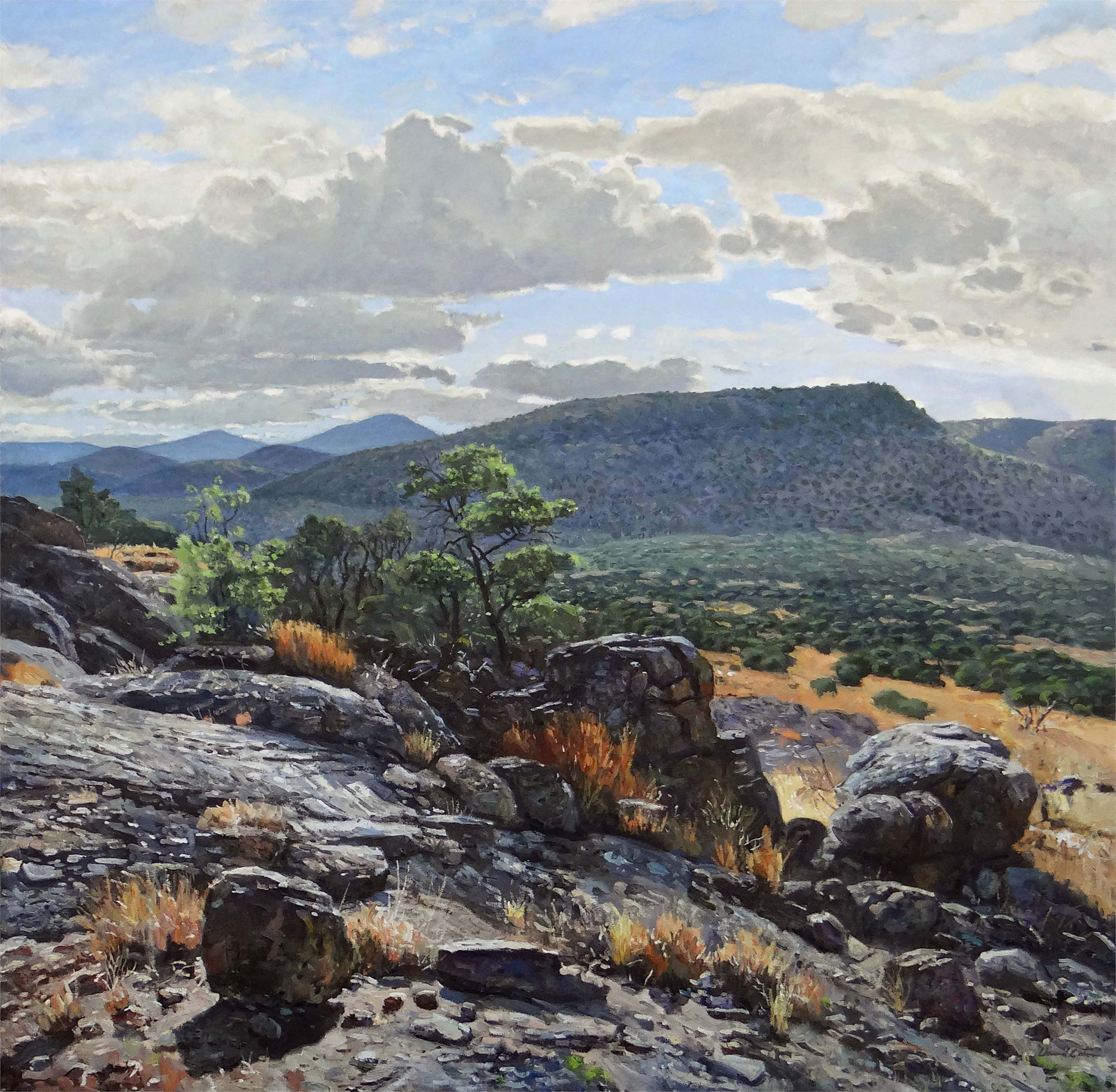 Davis Mountains from the Kaiser Ranch by David Caton
