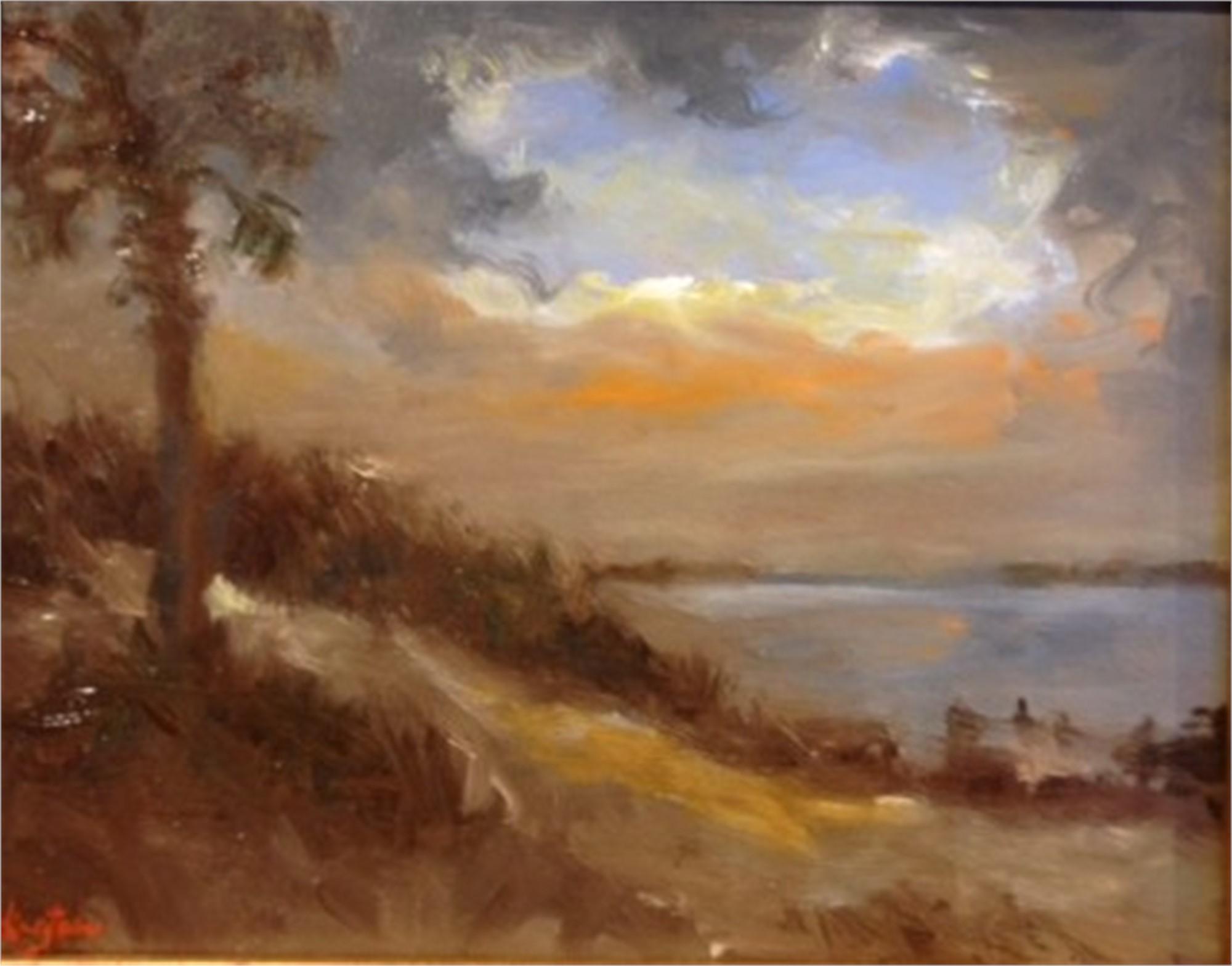 Charleston Harbor at Dusk by Jim Darlington