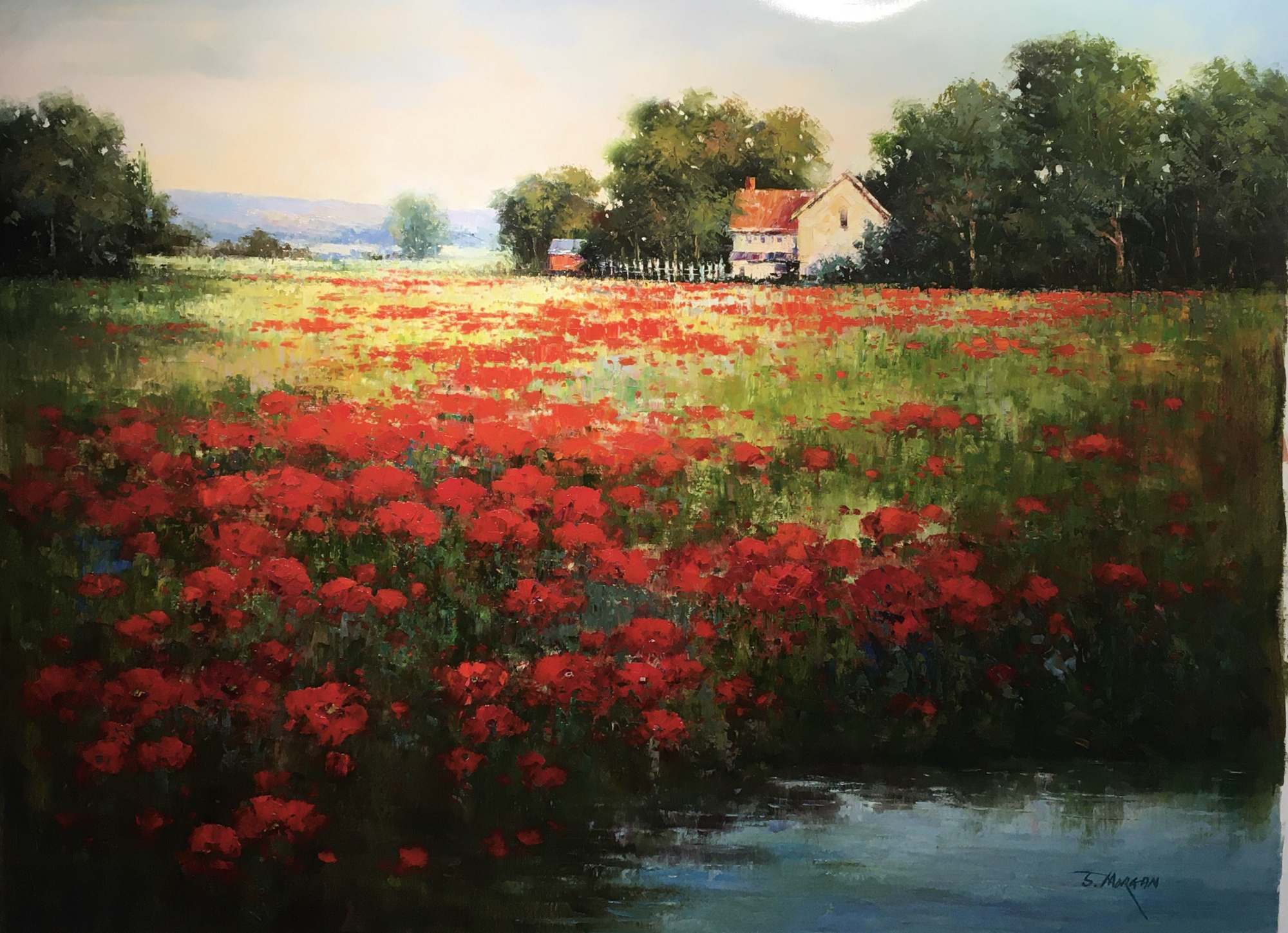 POPPIES BY THE POND by J MORGAN