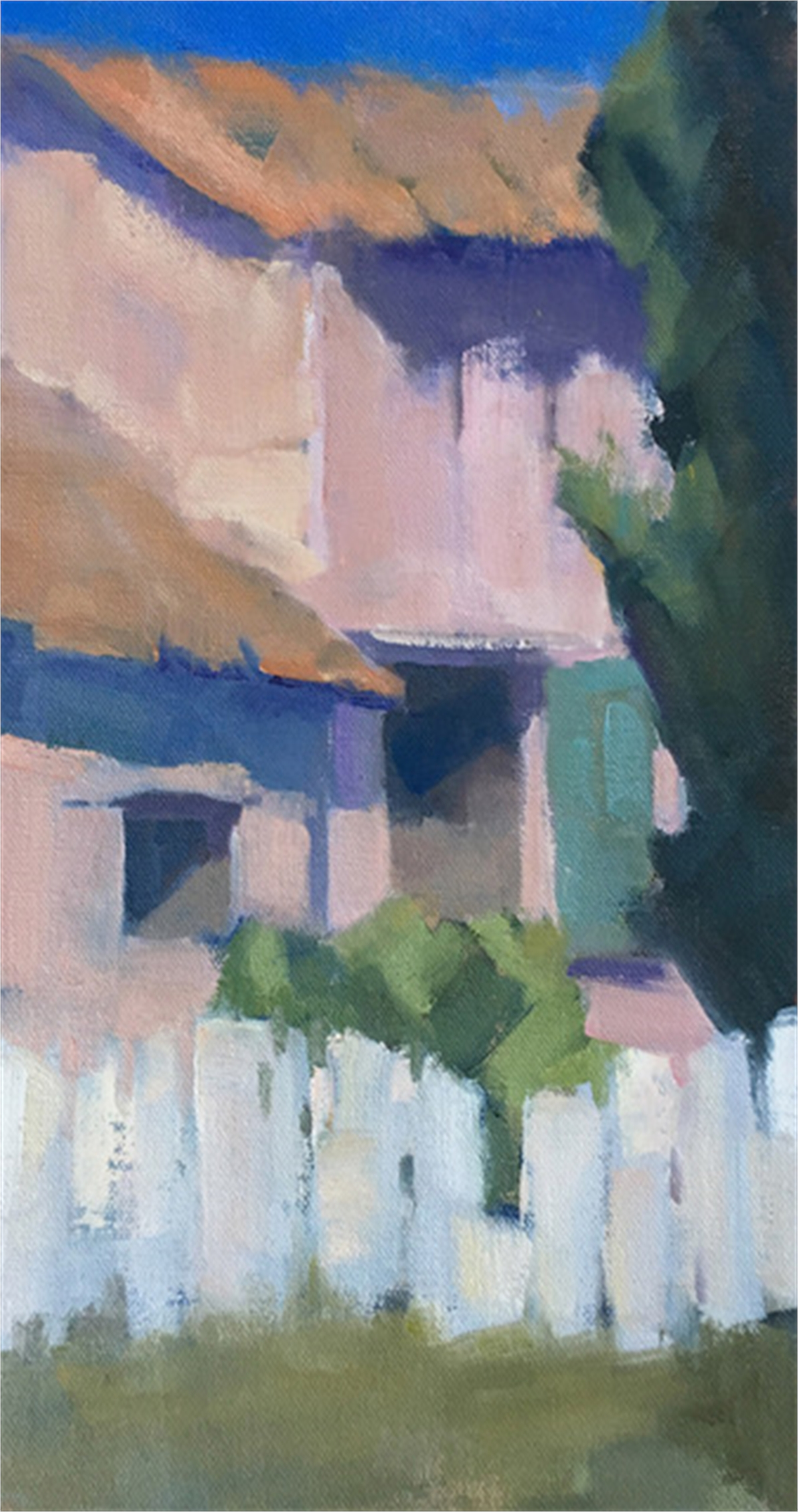 Pink House by Lesley Powell