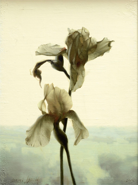 Backlit Iris by Daniel Sprick