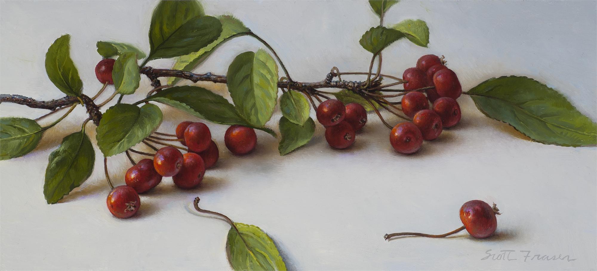 Red Crabapples by Scott Fraser