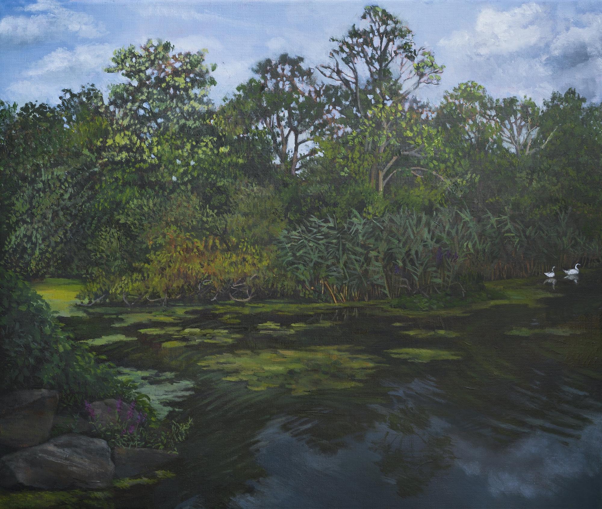 Swan Lake by Kim Power