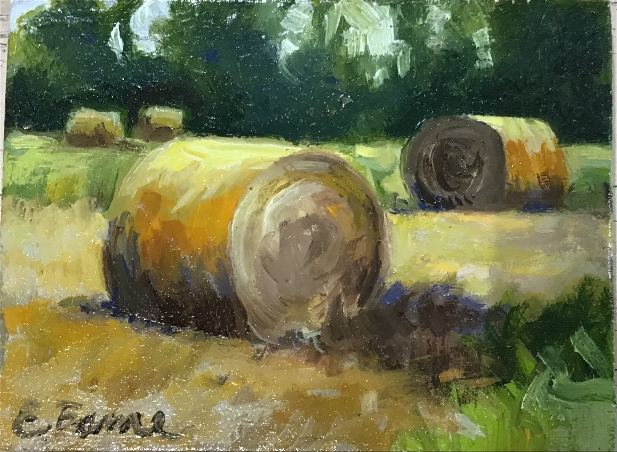 Haybale closeup by Elizabeth Bame