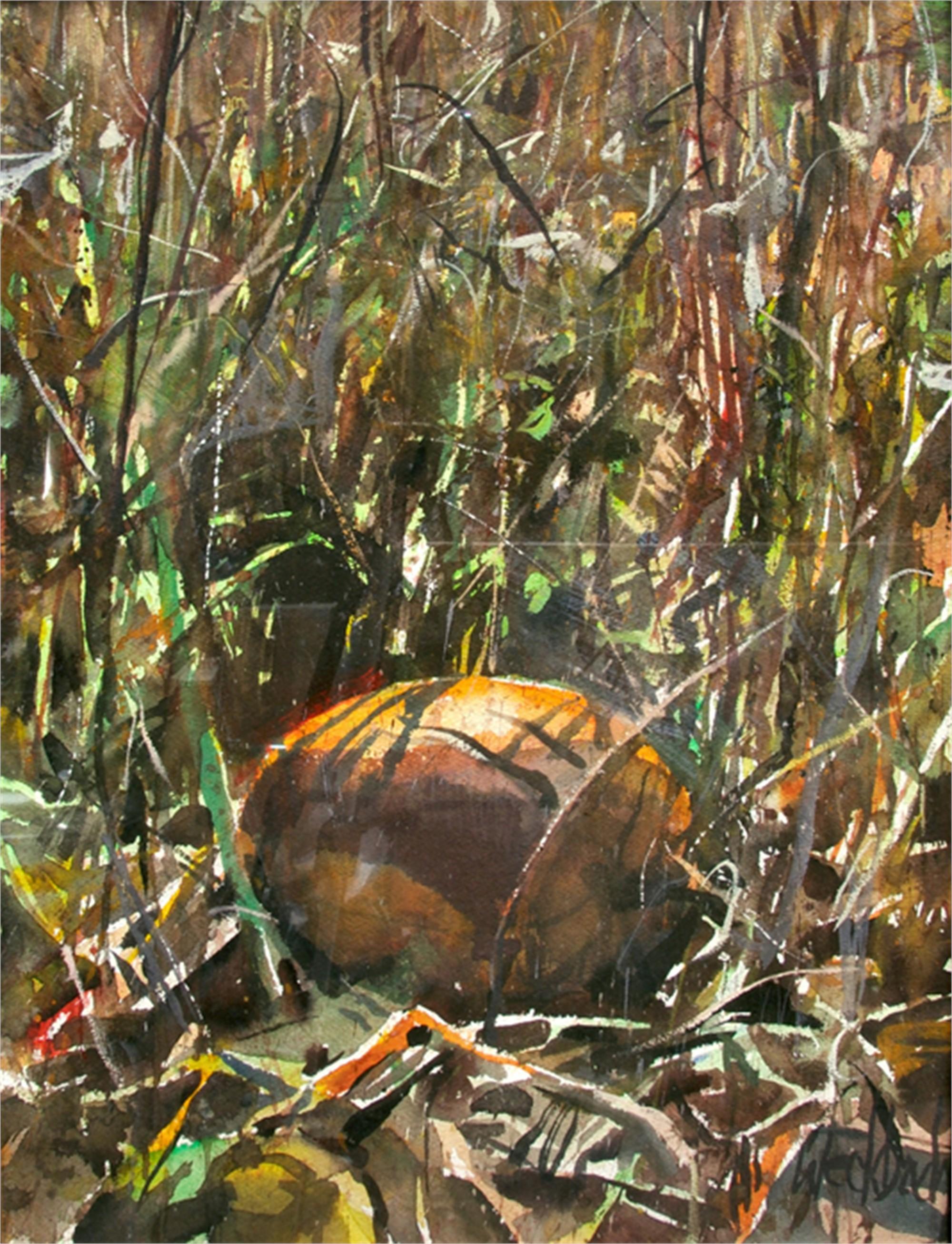 Hiding Pumpkin by Kevin Weckbach